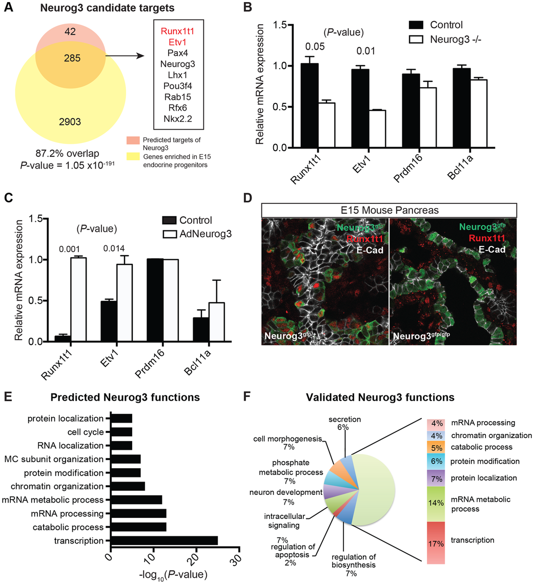 Identifying biological functions and targets of Neurog3.