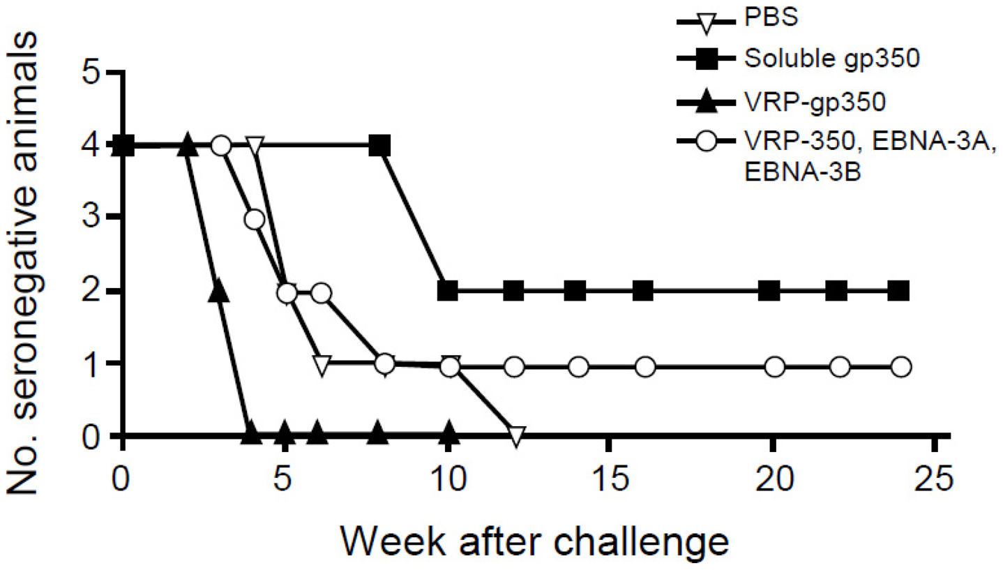 Detection of antibody to rhesus LCV VCA in monkeys immunized with soluble gp350, VRP-gp350, a combination of VRP-350, VRP-EBNA-3A, and VRP-EBNA-3B, or PBS.