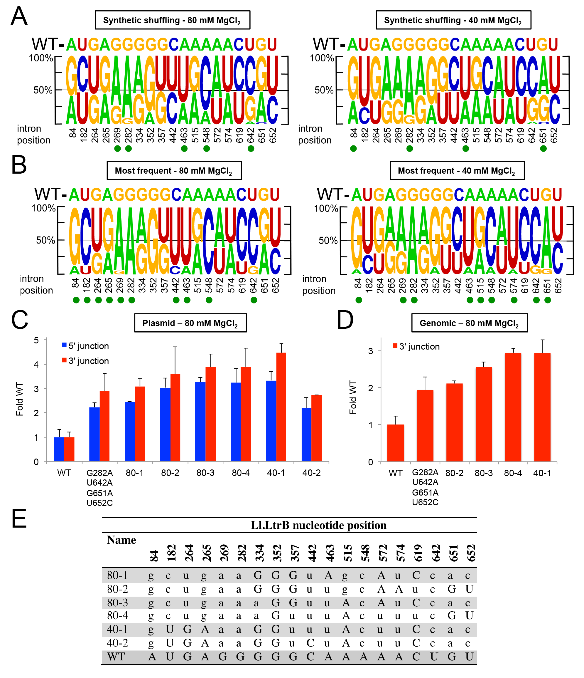 Synthetic shuffling of positively selected mutations identifies Ll.LtrB variants with enhanced retrohoming into plasmid and chromosomal target sites in human cells.