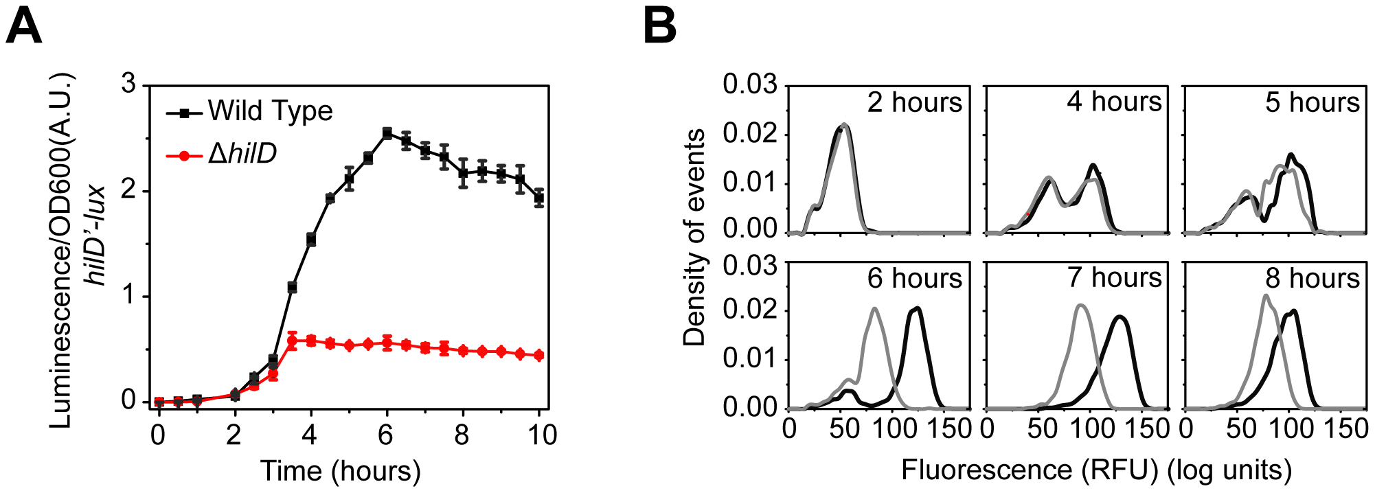 SPI1 gene expression is induced by a step increase in P<i><sub>hilD</sub></i> promoter activity.