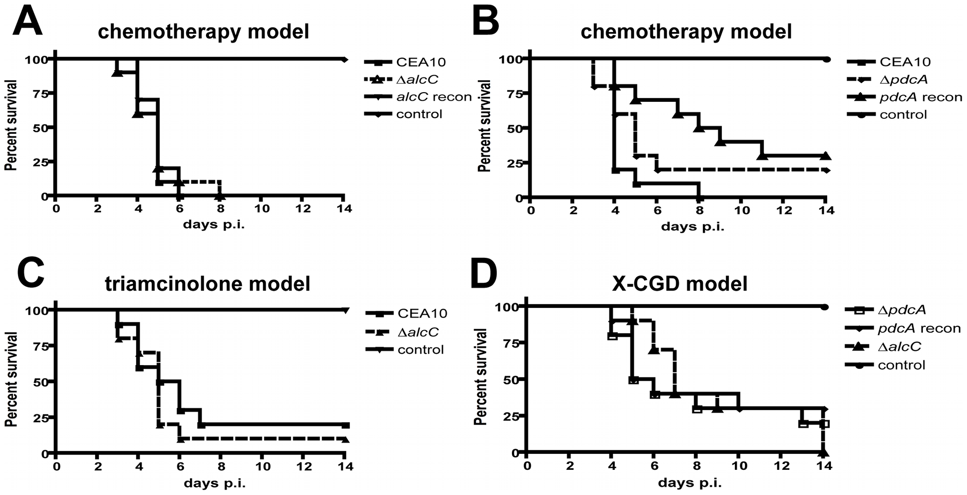 Loss of ethanol fermentation does not affect survival of <i>A. fumigatus</i> infected mice.