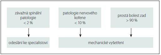 Příloha 1. Klasifikační algoritmus (<sup>©</sup>The McKenzie Institute International).