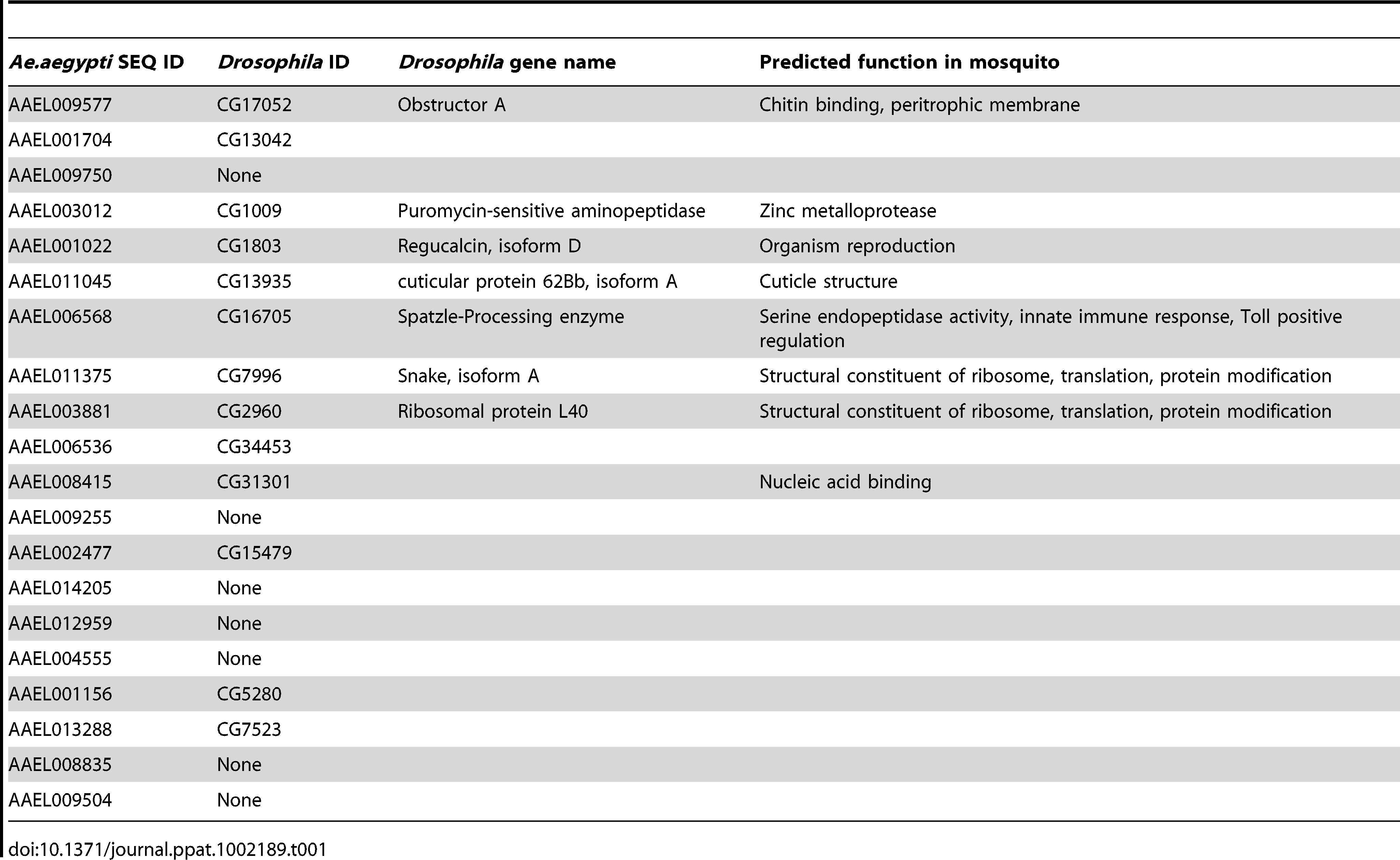 Predicted <i>Ae. aegypti</i> gene function and closest homolog in <i>Drosophila</i>.