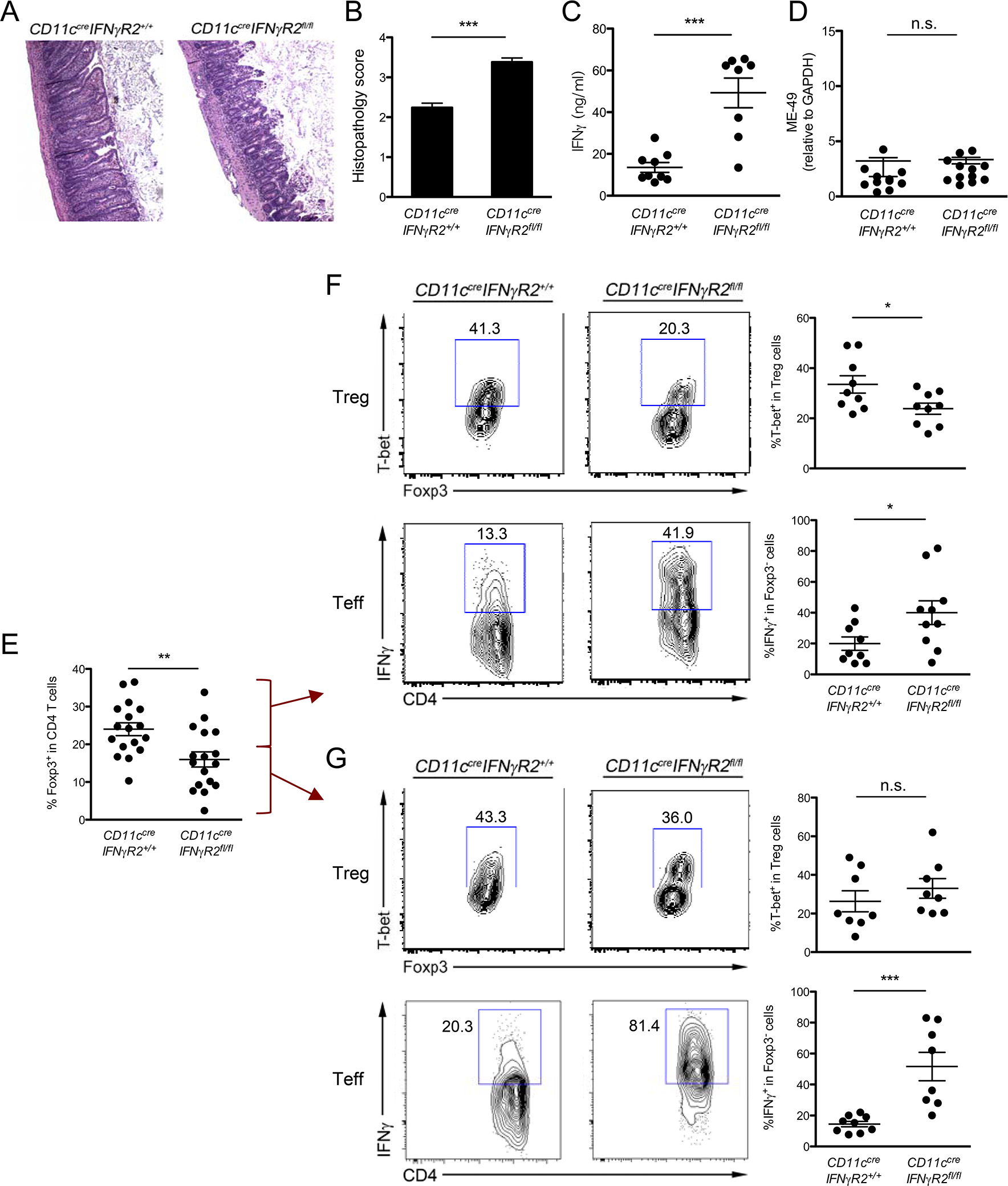Reduced T-bet<sup>+</sup> Th1-Treg cells in <i>CD11c</i><sup><i>cre</i></sup><i>IFNγR2</i><sup><i>fl/fl</i></sup> mice resulted in unrestrained IFNγ-mediated Th1 inflammation during <i>T</i>. <i>gondii</i> infection.
