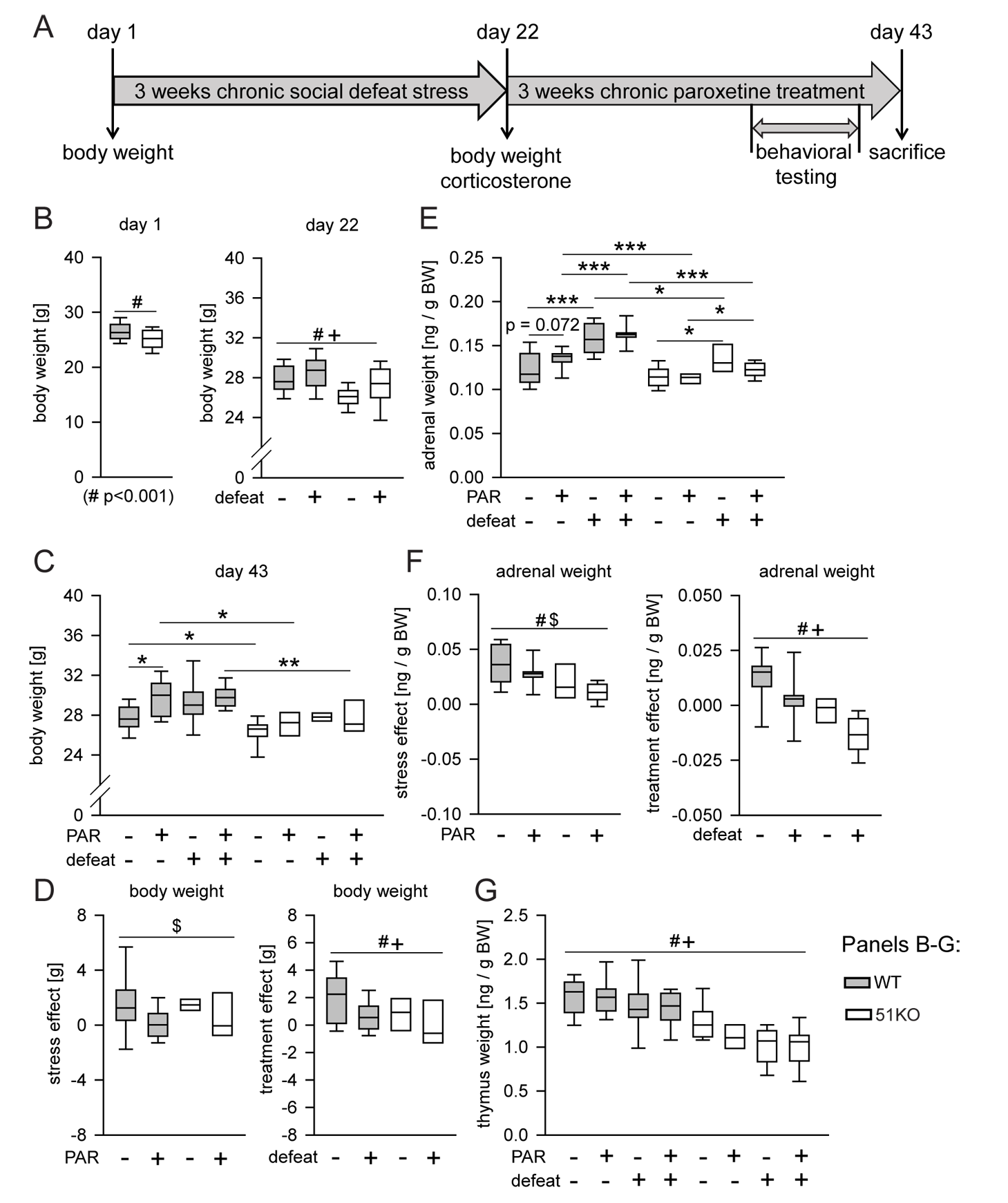 Deletion of FKBP51 diminishes the physiological effects of chronic stress and chronic PAR treatment.