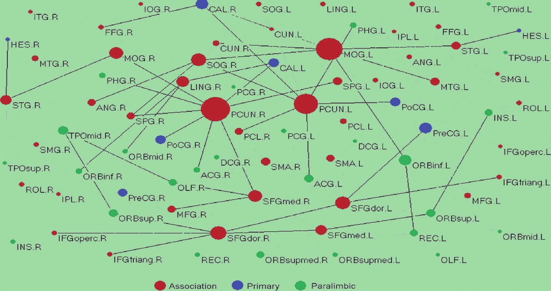 """Příklad globálního konektomu lidské mozkové kůry zjištěného mapováním """"drah"""" neboli DTI (diffuse tensor imaging) traktografií.  Písmena označují jednotlivé korové oblasti. Průměr kruhů označuje hustotu vzájemného propojení. Primární smyslové korové oblasti jsou modře, asociační červeně, paralimbické zeleně (10). """"Vymezené"""", přiitom nikoli přísně modulární """"fodorovské"""" konektomy tohoto typu jsou podle evoluční psychologie doménově specifickými nositeli jednotlivých adaptací. Příkladem takového konektomu je neuronální síť velkého rozsahu, která zpracovává lidské tváře (Koukolík, 2011; 18)."""