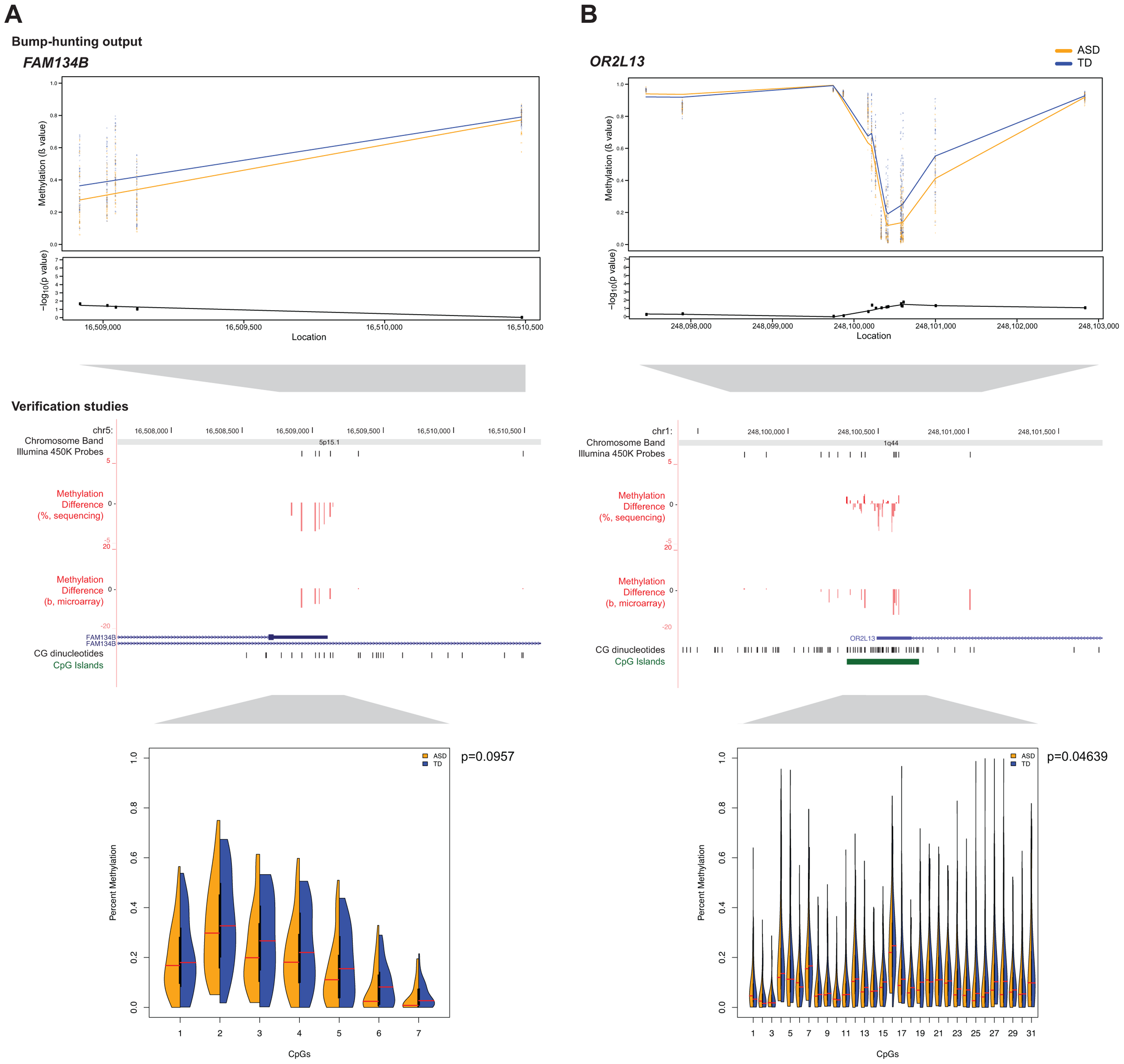 Massively-parallel bisulphite sequencing testing of candidate differentially methylated regions.