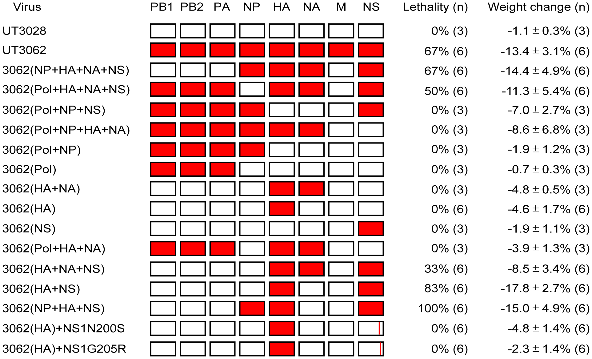 The HA and NS genes contribute to virulence in ferrets.