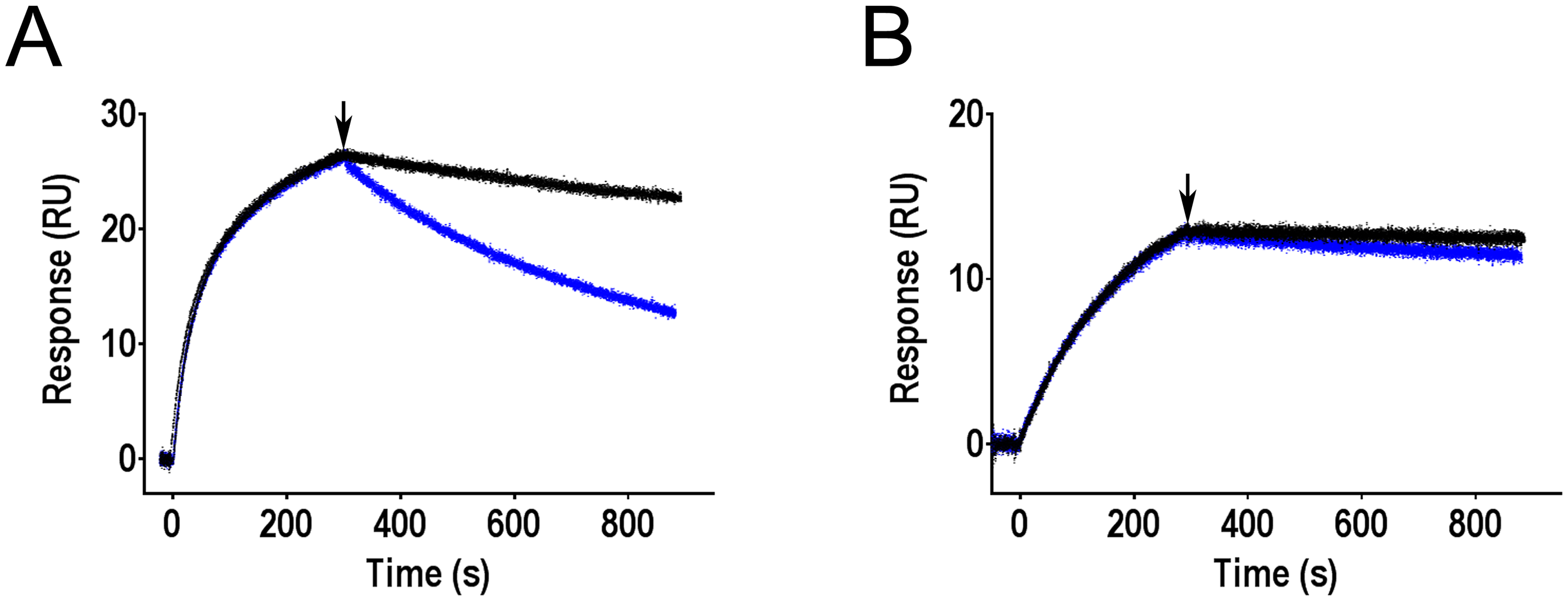 Effect of mannose on antibodies bound to FimH as determined by surface plasmon resonance.