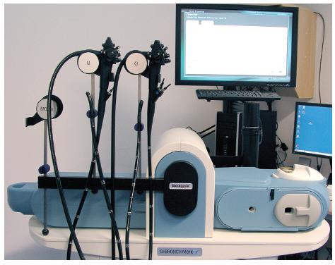 Počítačový interaktivní simulátor pro výuku digestivní endoskopie; celkový pohled na zařízení