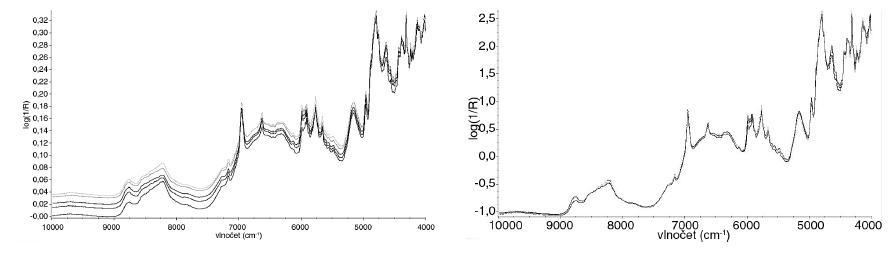 Spektra před (vlevo) a po použití (vpravo) SNV normalizace