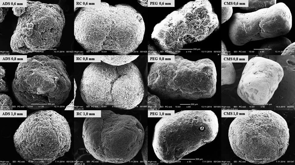 Snímky peletových jader (SEM)