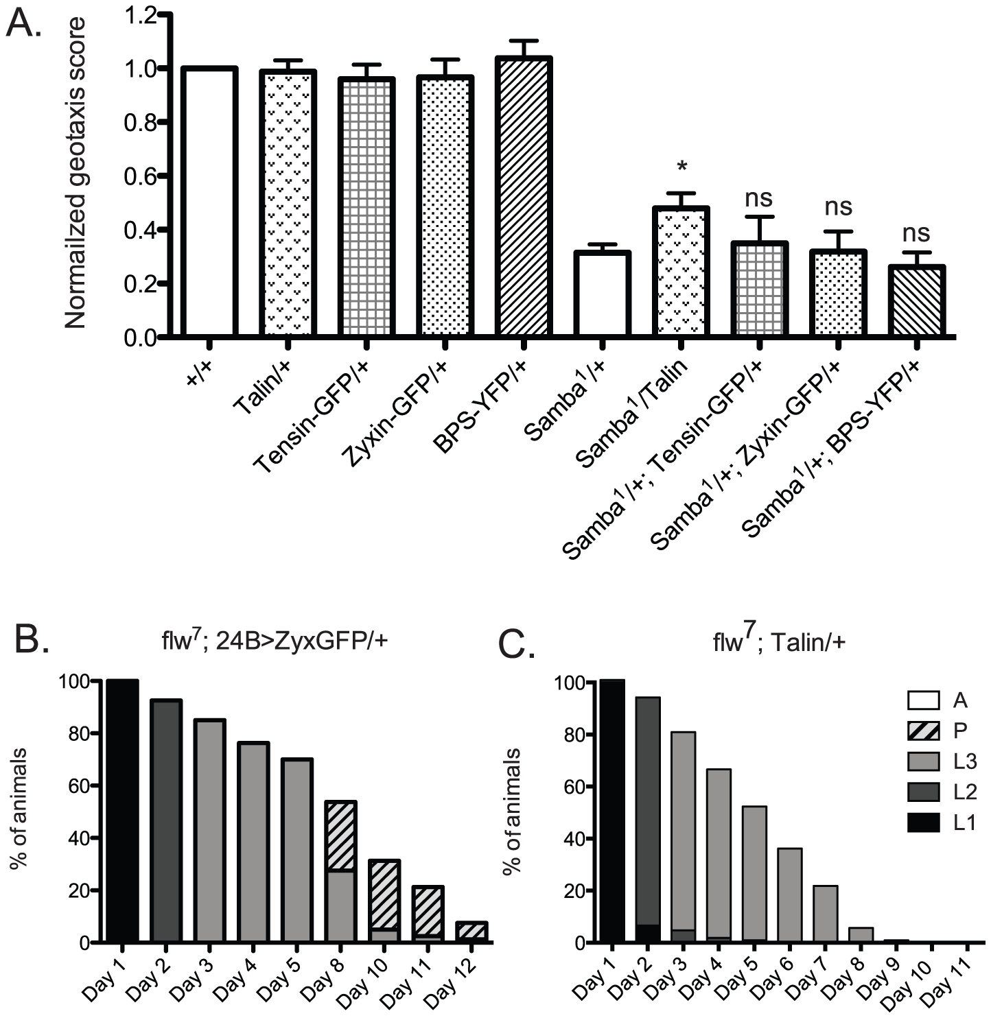 Increased expression of a panel of IAC proteins has little effect on hypercontraction mutants.