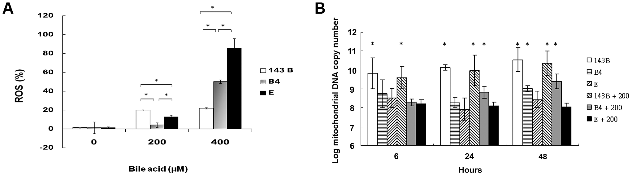 Measurement of reactive oxygen species (ROS) production and mitochondrial DNA copy number.