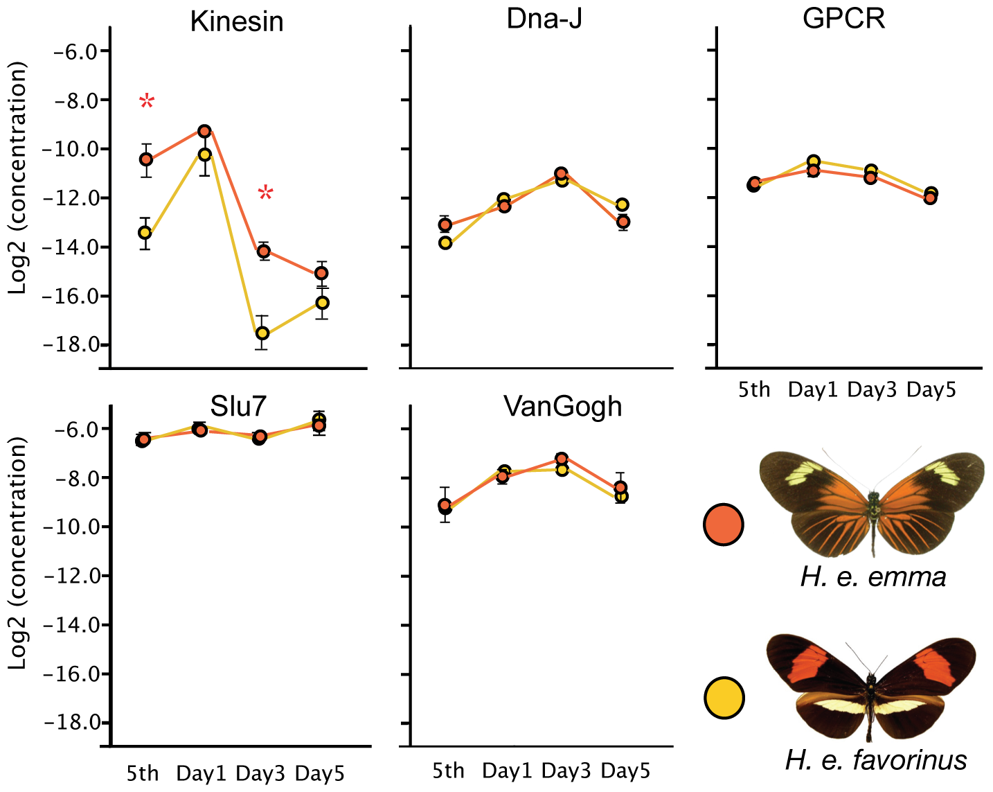 Quantitative PCR of <i>D</i>-interval candidate genes implicates <i>kinesin</i>.