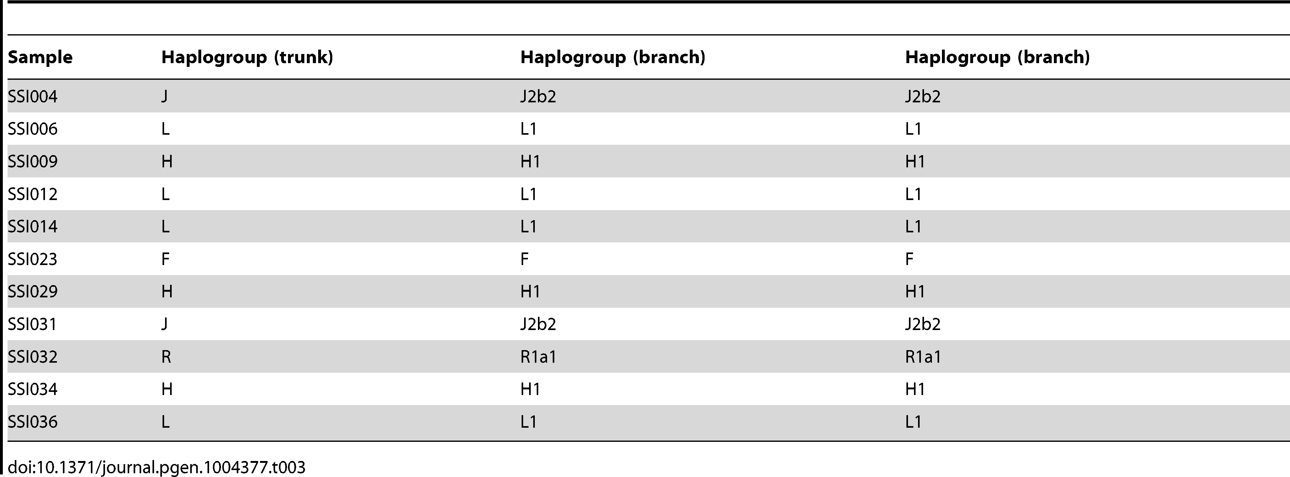 Chromosome Y haplogroup assignment for the 11 SSIP male samples.