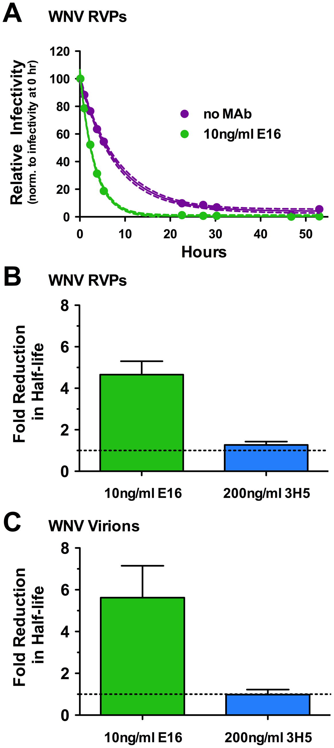 The functional half-life of WNV decreases in the presence of virus-specific antibody.