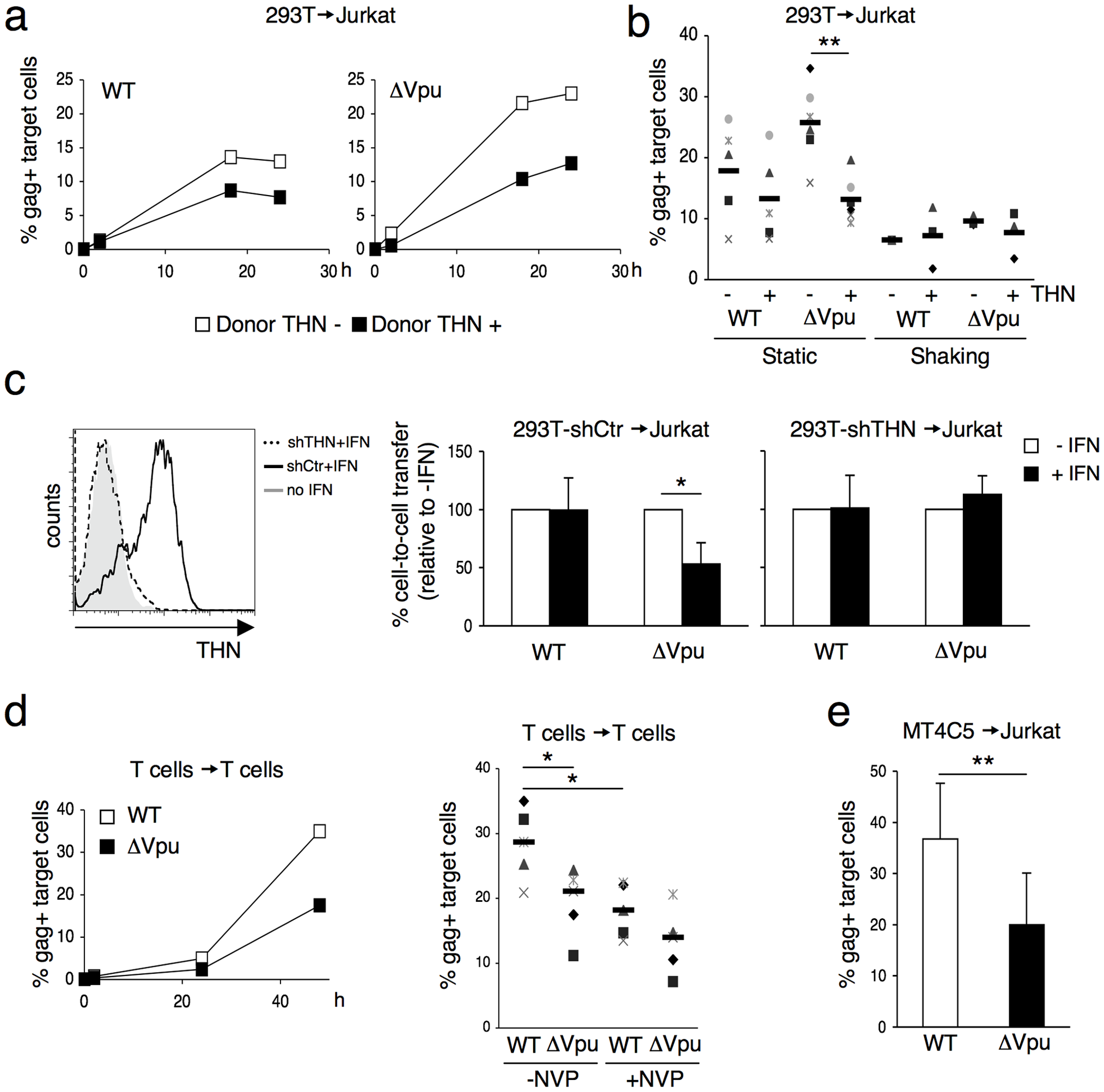Tetherin reduces HIV cell-to-cell transmission from 293T and primary T cells.