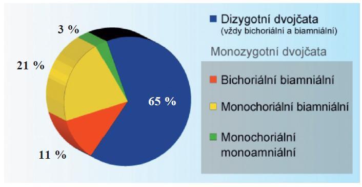 Procento dvojčat podle zygocity a chorionicity (graf je vytvořen na základě mnoha údajů z literatury a výsledků studií)