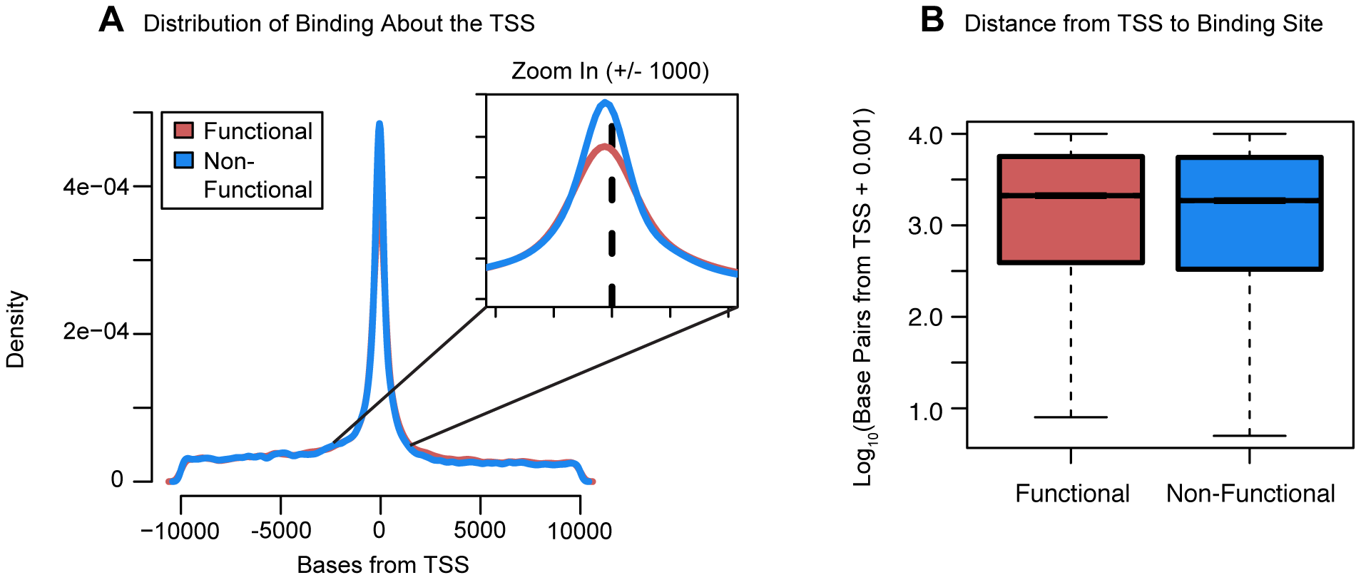 Distribution of functional binding about the TSS.