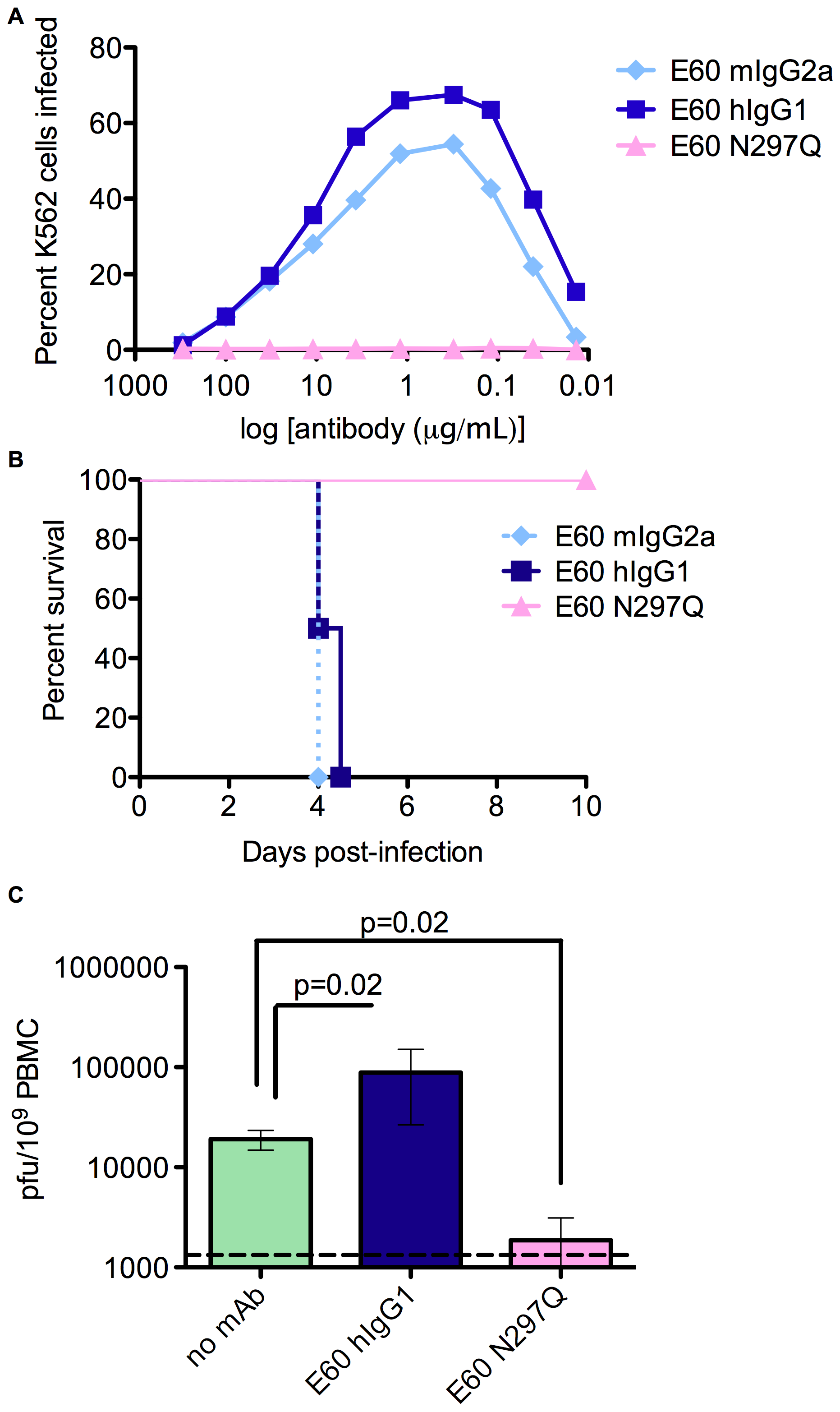 Antibodies with a mutated FcγR binding site cannot enhance DV infection <i>in vitro</i> or <i>in vivo</i>.