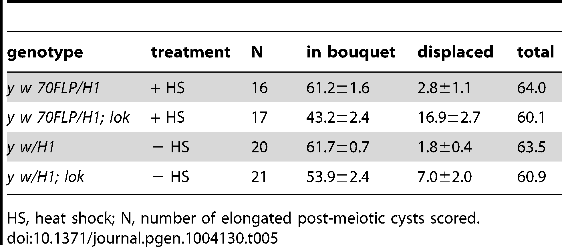 Sperm head displacement following dicentric chromosome induction.