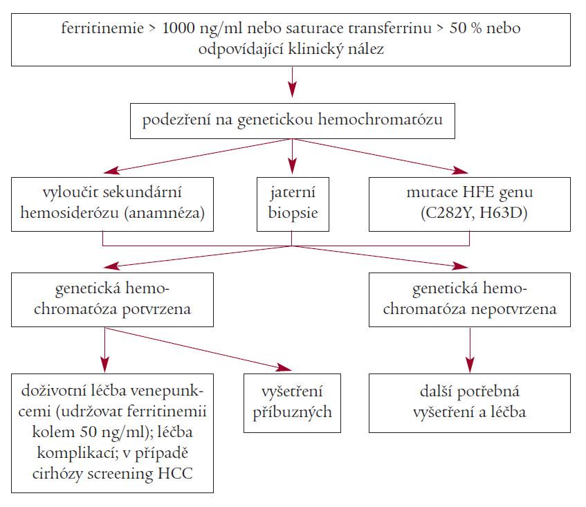 Schéma diagnostiky a léčby genetické hemochromatózy.