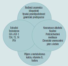 Schéma 2. Normální kostní denzita závisí na vzájemném působení genetických, enviromentálních, hormonálních a dietetických faktorů.
