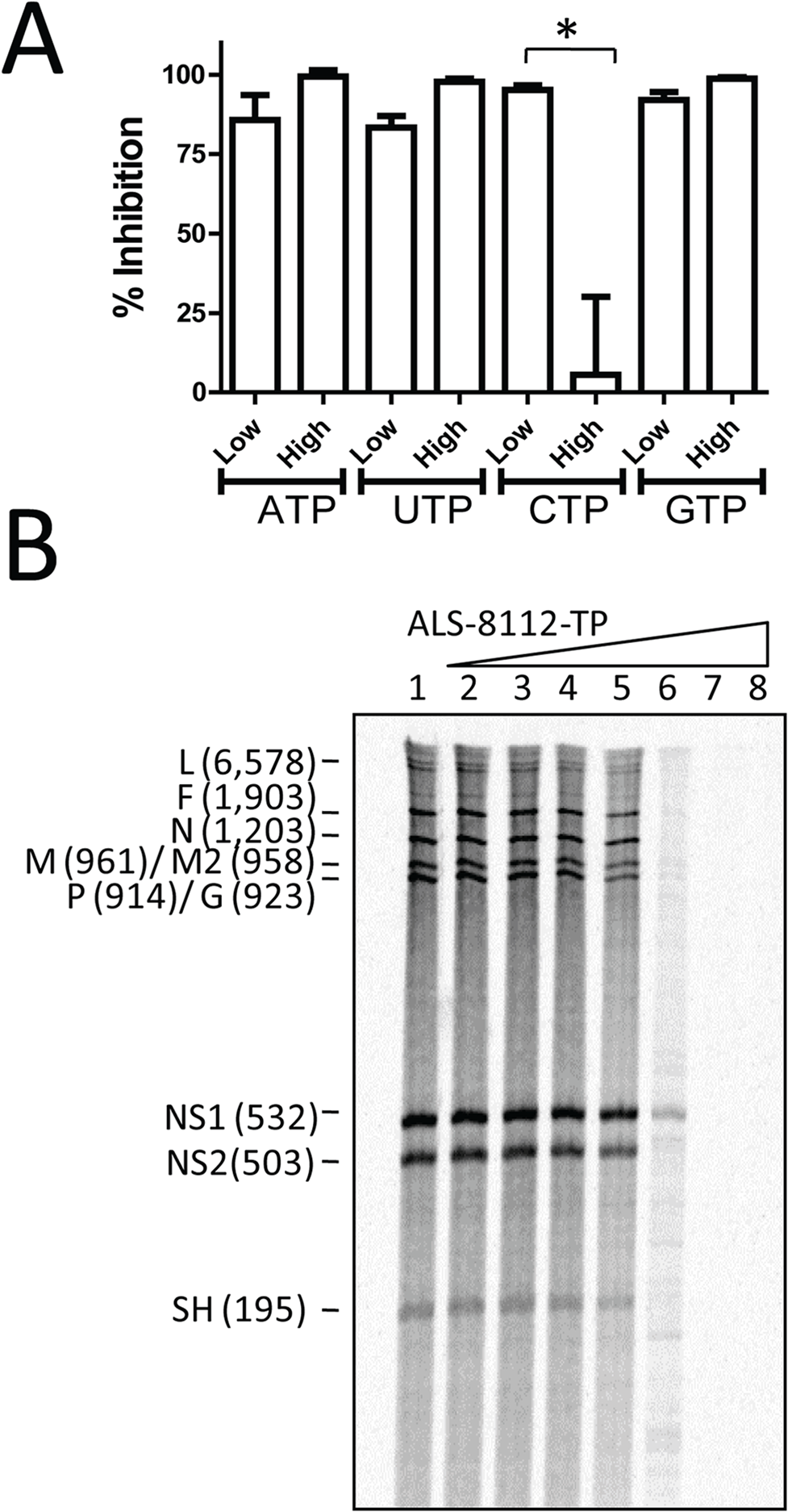 Competitive inhibition of RSV RNP complex by ALS-8112-TP.