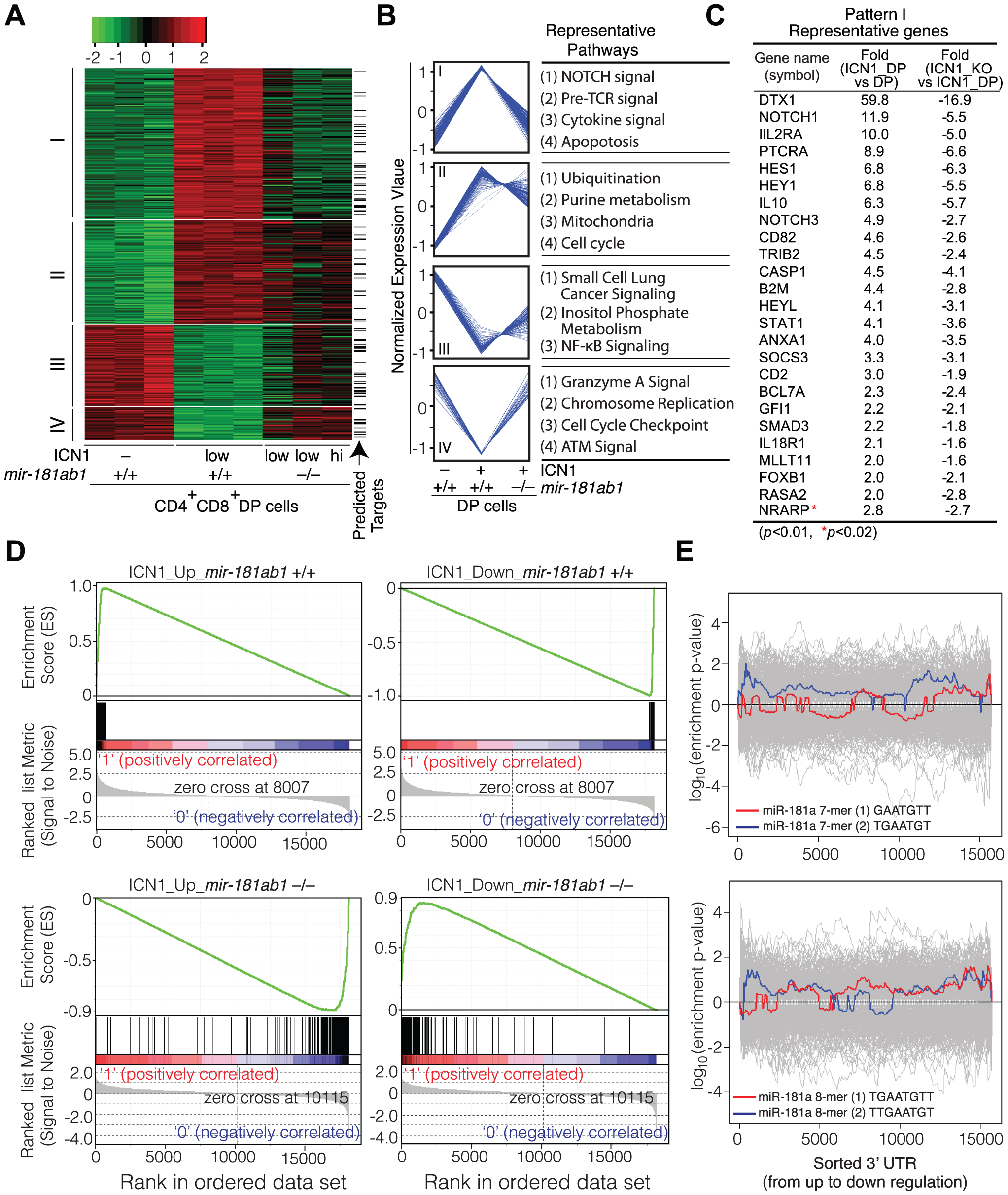 Loss of <i>mir-181ab1</i> in DP leukemia cells inhibits ICN1-controlled genetic programs.