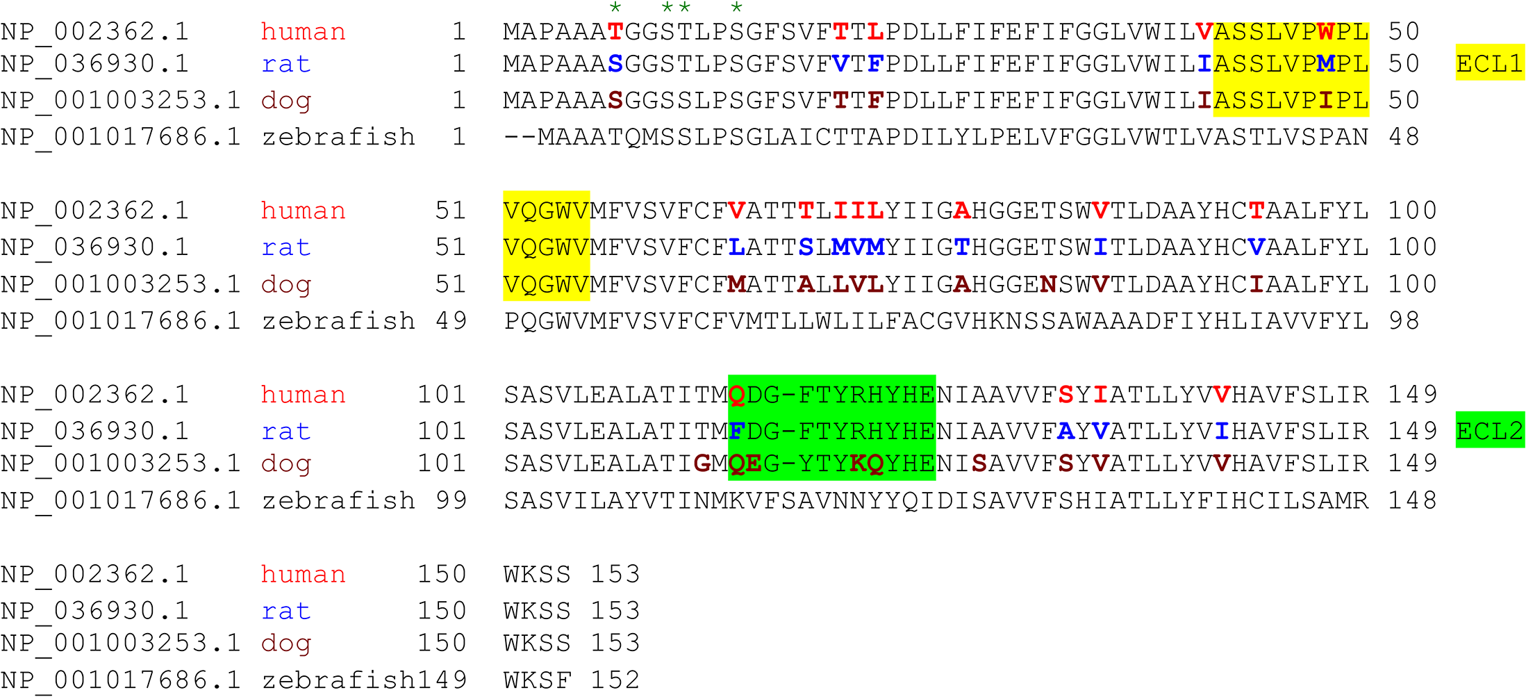 Species variation in the amino acid sequence of MAL.