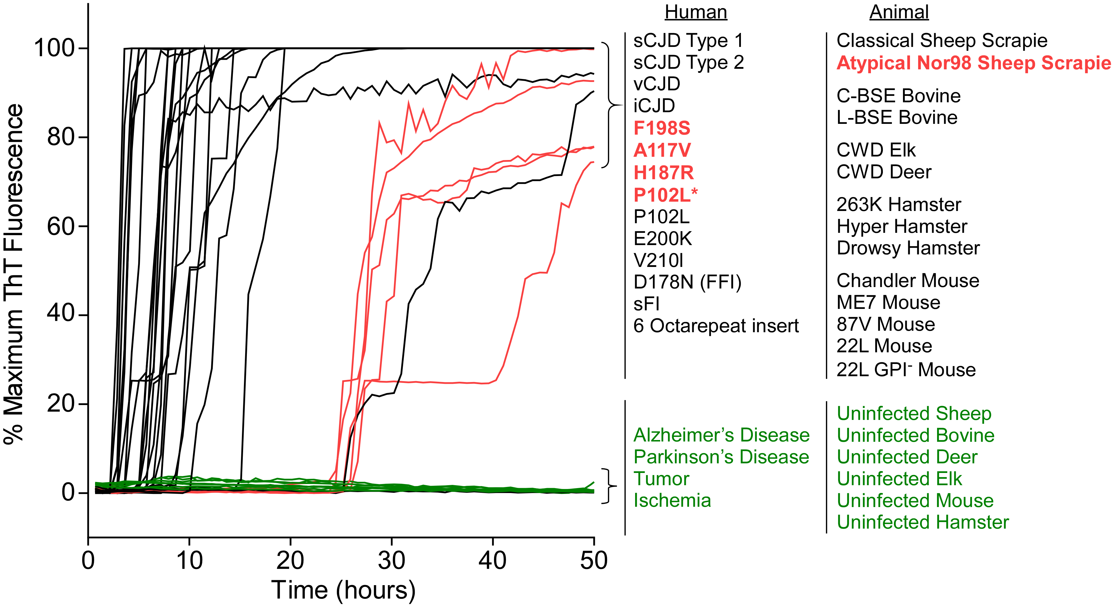 RT-QuIC detection of 28 types of prion seeds from 5 different species using new BV rPrP<sup>Sen</sup> substrate.