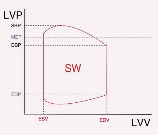 Znázornění tepové práce v PV diagramu. Plocha ohraničená červenou křivkou odpovídá SW. V praxi je počítána jako plocha obdélníku ohraničeného ESV a EDV a MEP s EDP.