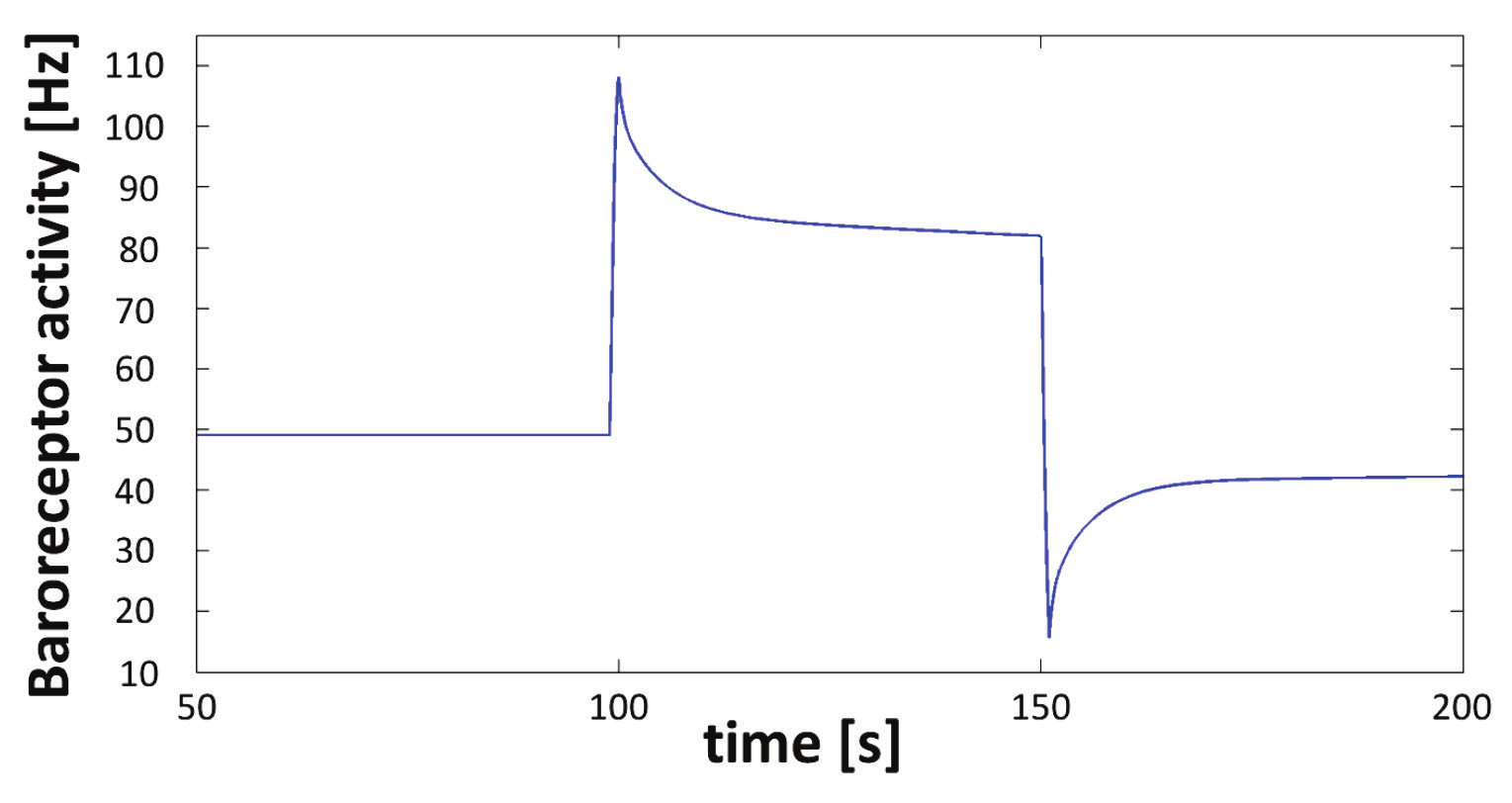 Fig. 5: Step change of baroreceptor activity during blood pressure change from 100 mmHg to 150 mmHg and vice versa.