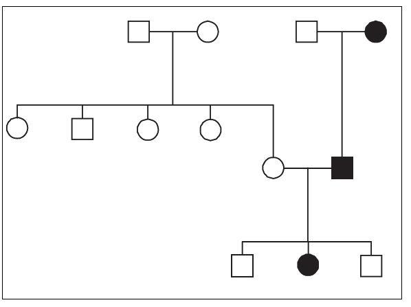Záchyt Ci-HHV-6 ve třech generacích jedné z rodin zachycených v ČR.  Nositelé Ci-HHV-6 jsou označeni černým vybarvením. Fig. 1. Detection of Ci-HHV-6 in three generations of a family in the Czech Republic. Ci-HHV-6 carriers are marked by black boxes and dots.