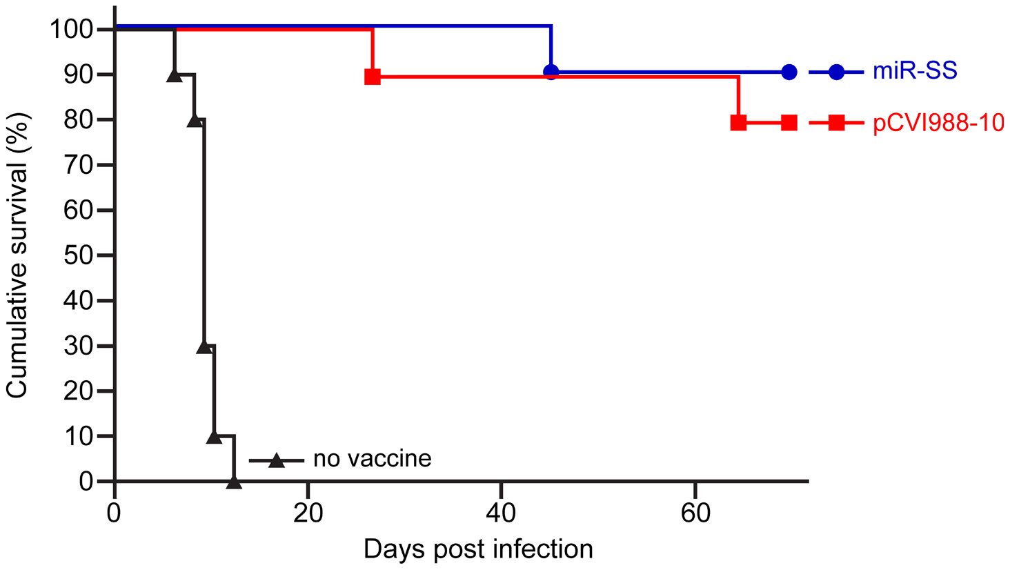 Protection from virulent MDV infection.