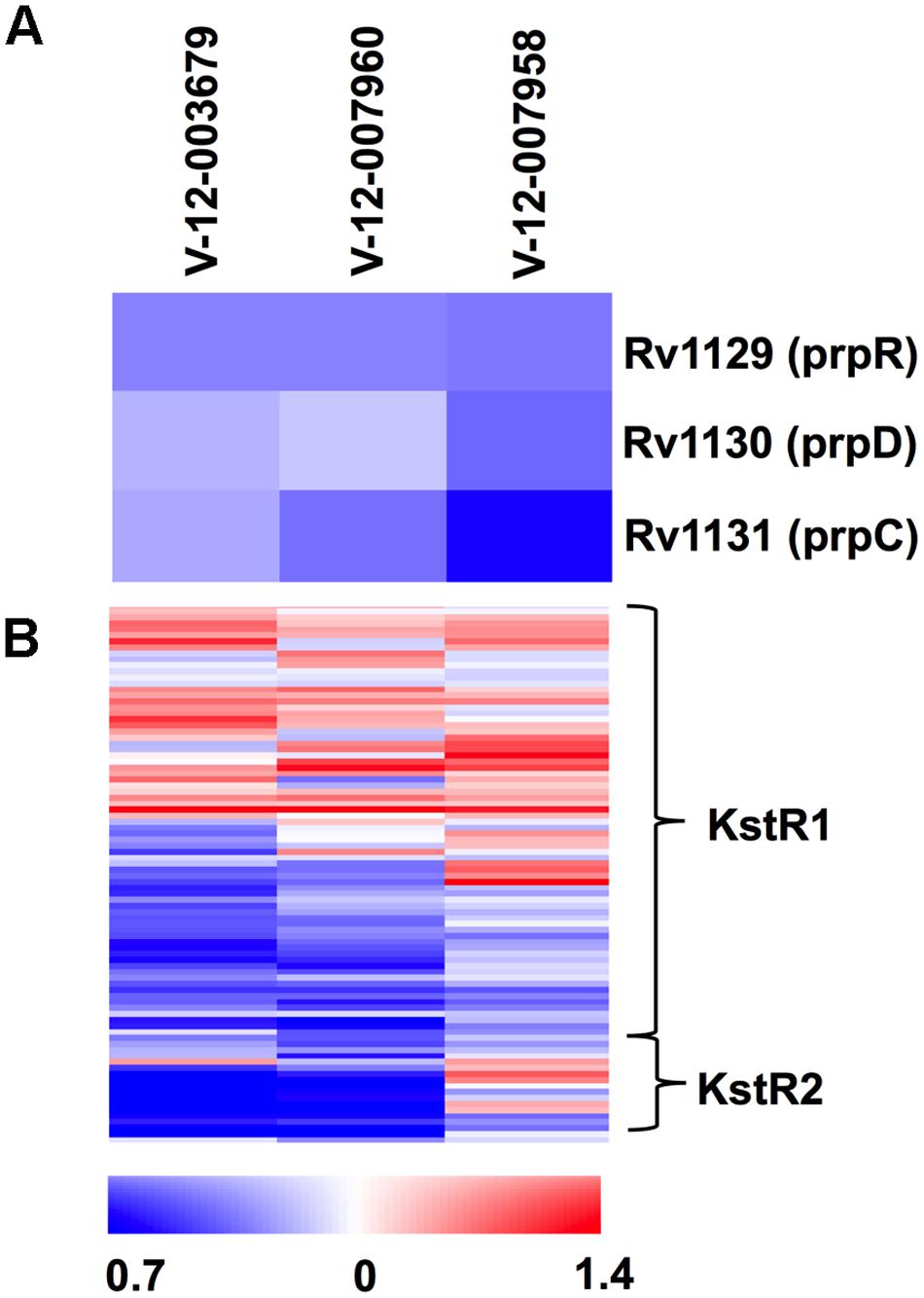 Orphan cholesterol utilization inhibitors display transcriptional response characteristic of blocked cholesterol utilization.