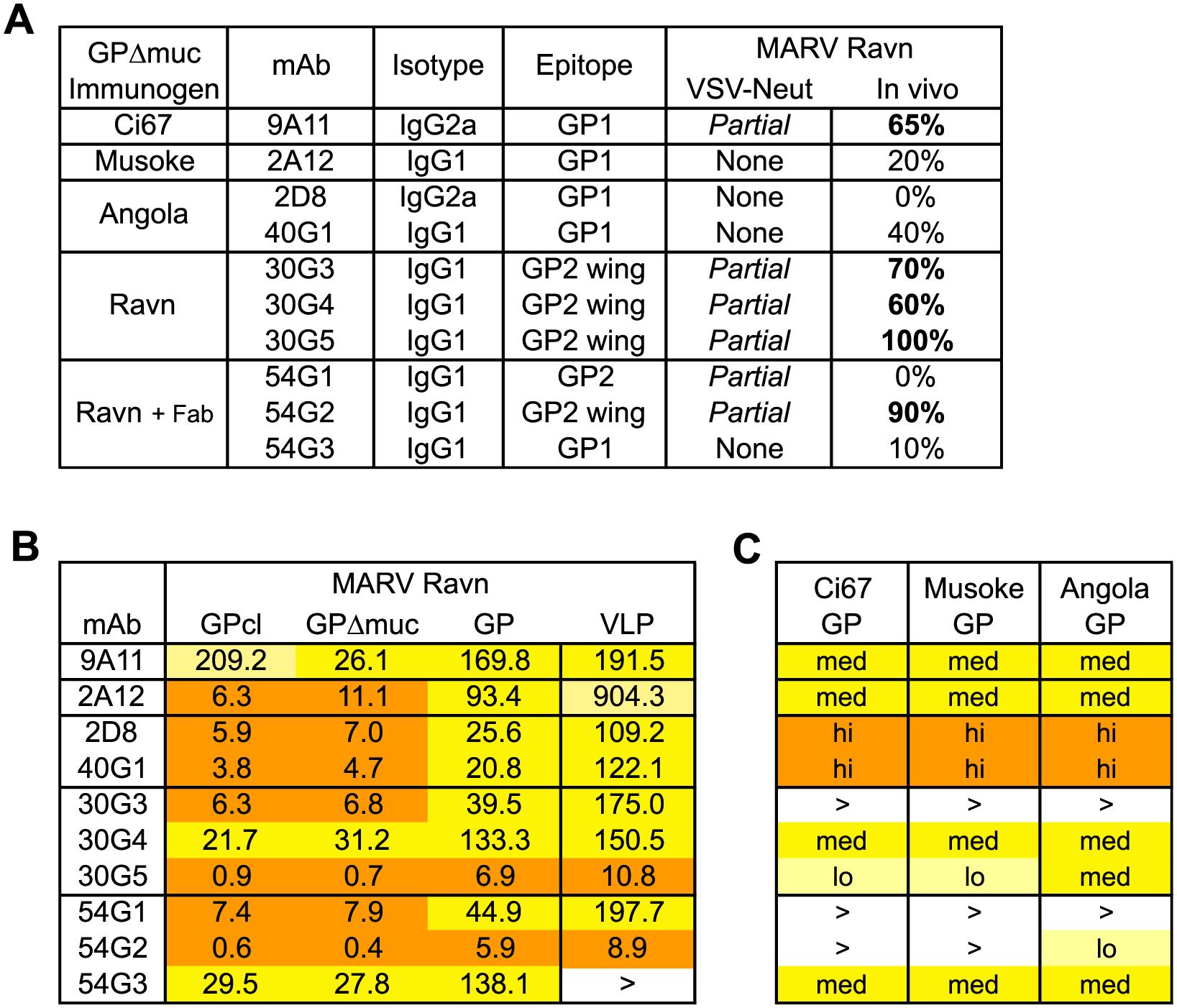 Antibody characterization.