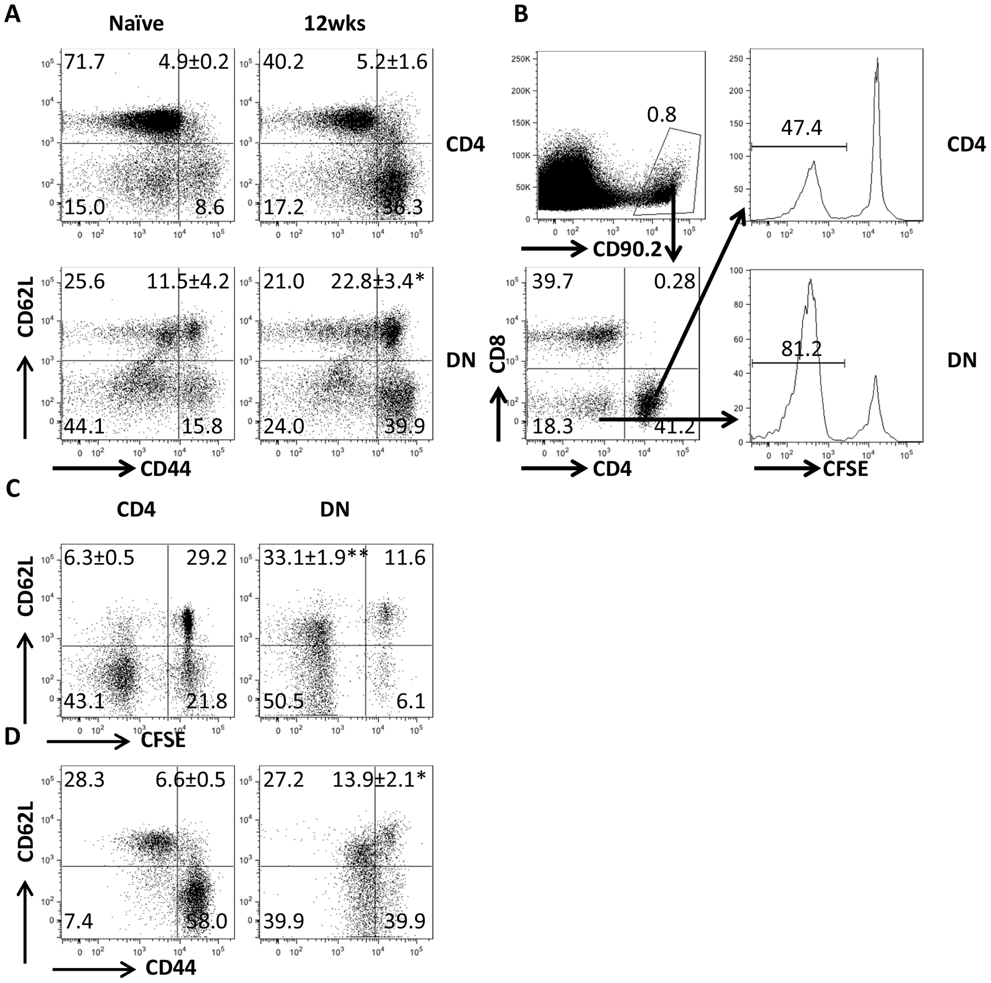 DN T cells from <i>L. major</i>-infected mice display phenotypic characteristic of memory cells.