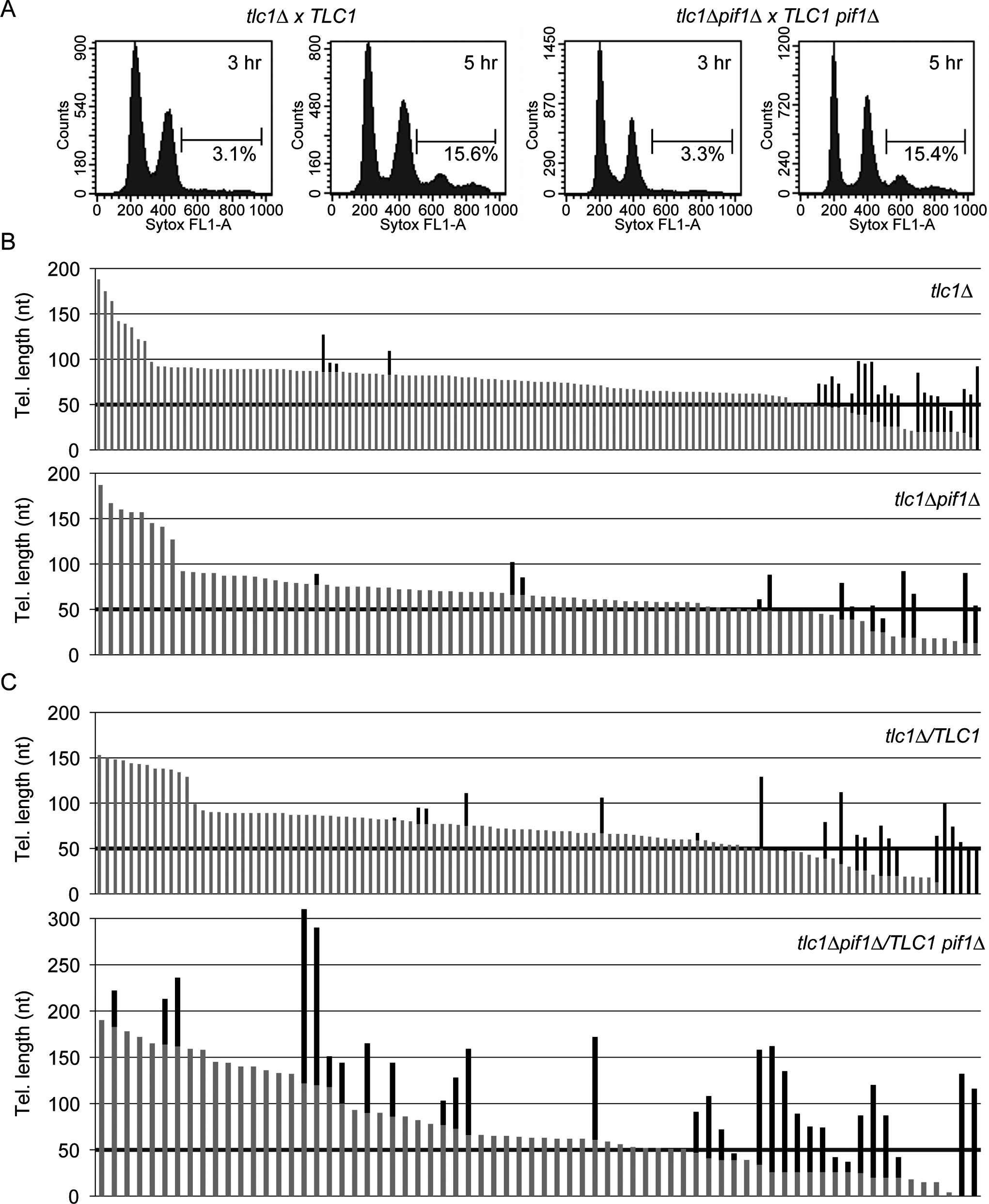 Absence of Pif1 results in increased frequency and extent of telomerase lengthening.