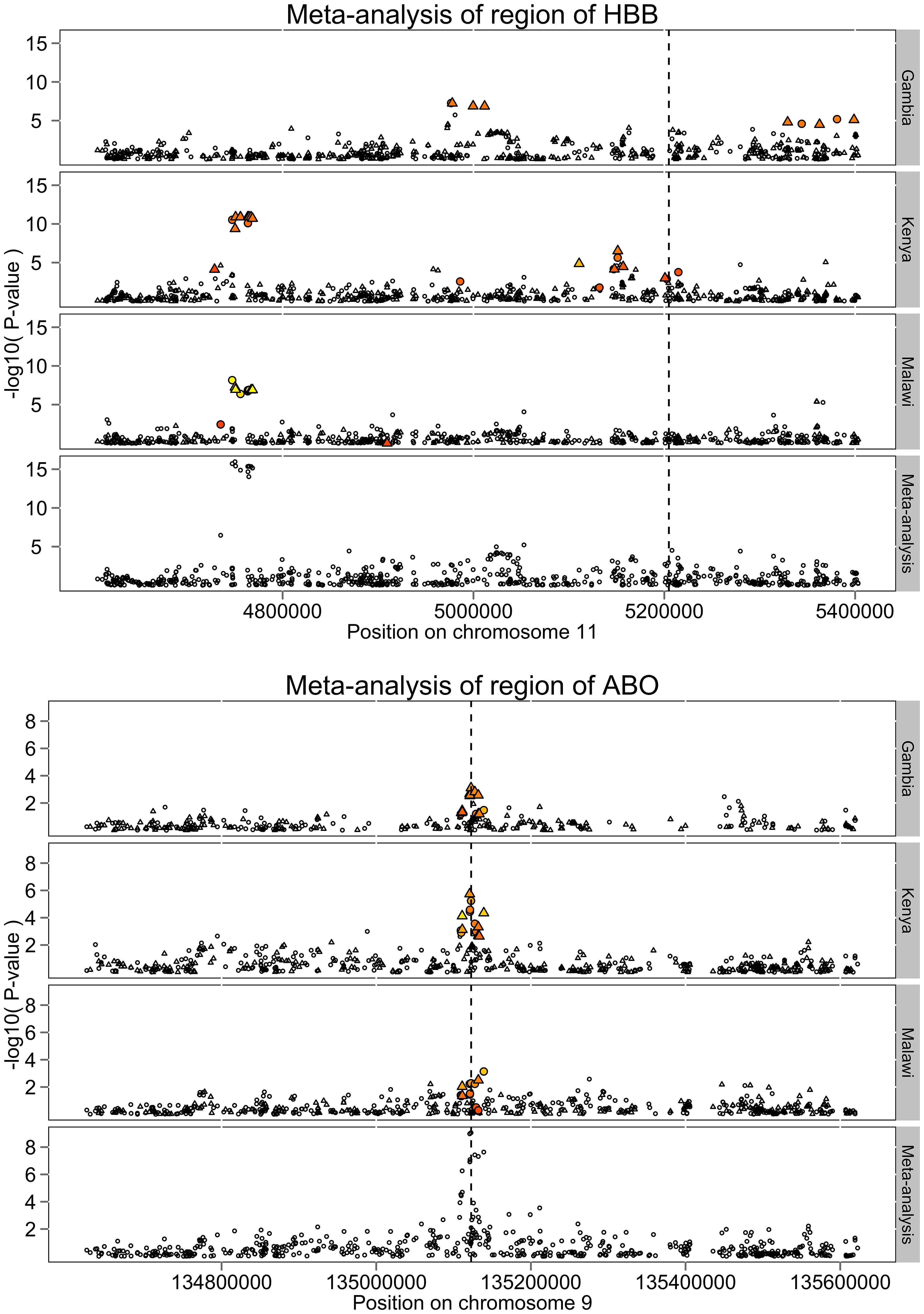 Patterns of association around the <i>HBB</i> and <i>ABO</i> loci.