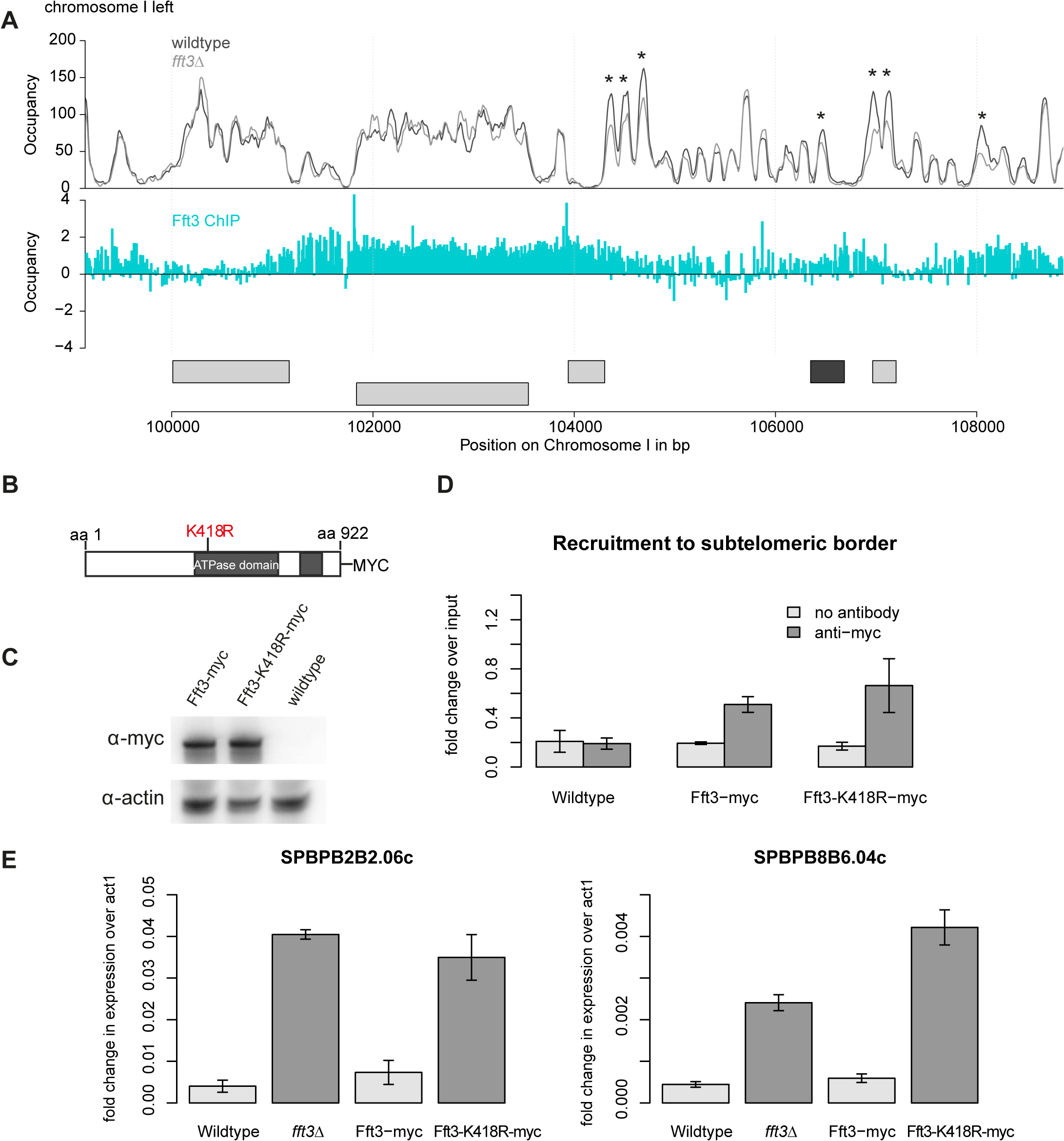 Subtelomeric silencing requires remodeling activity of Fft3.