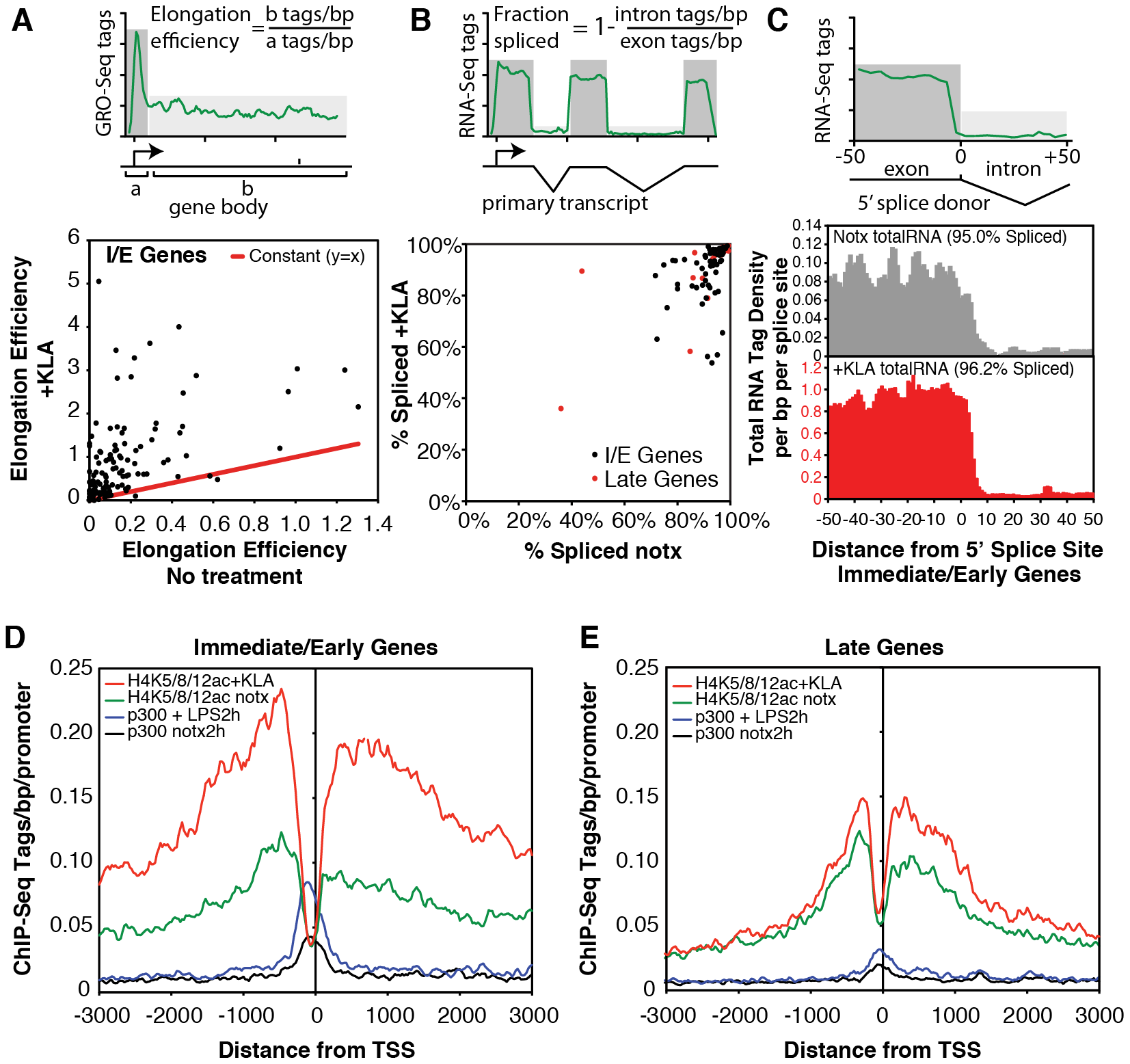 Quantification of elongation, splicing, and H4 actylation at I/E and late TLR4-responsive promoters.