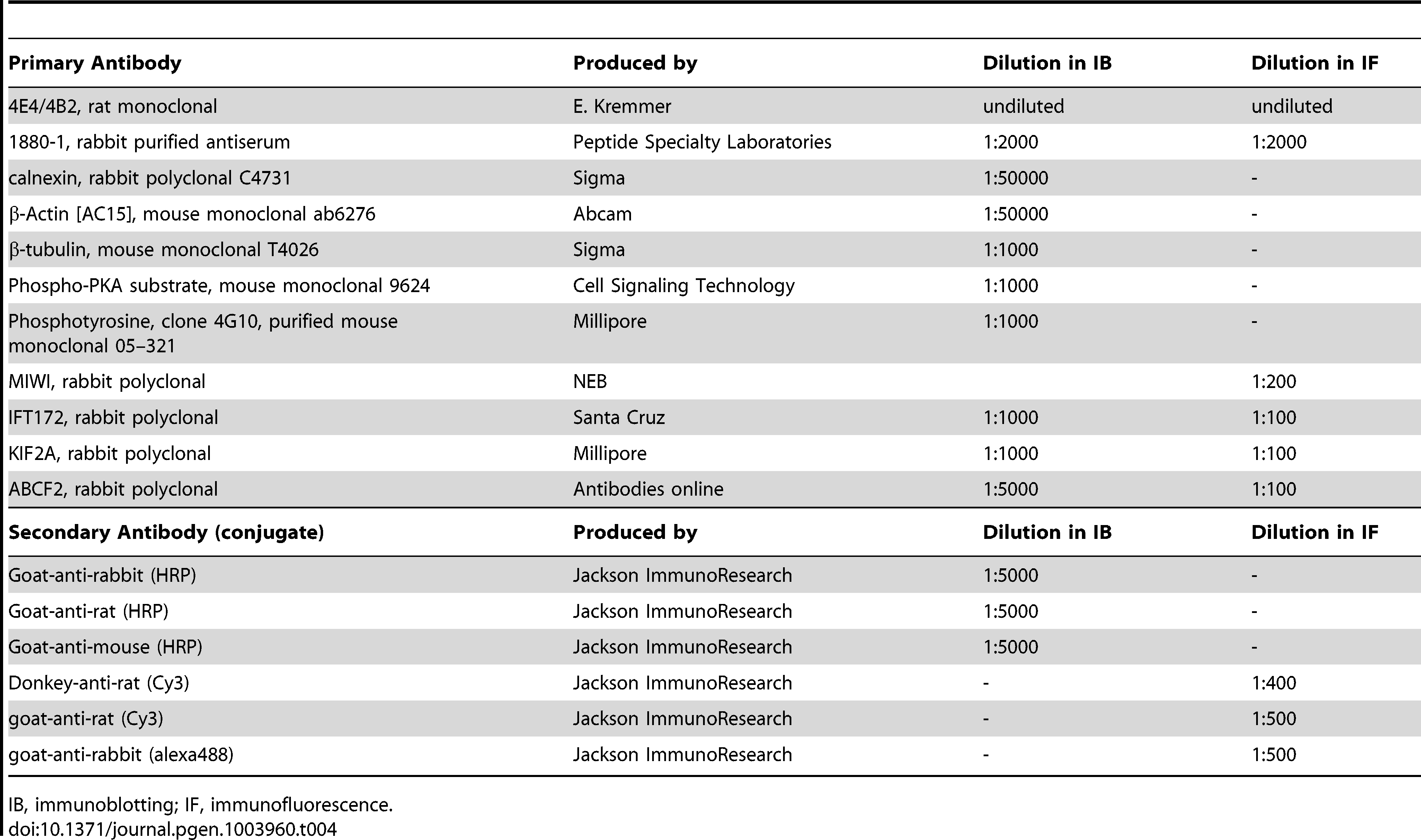 Antibodies and their dilutions.