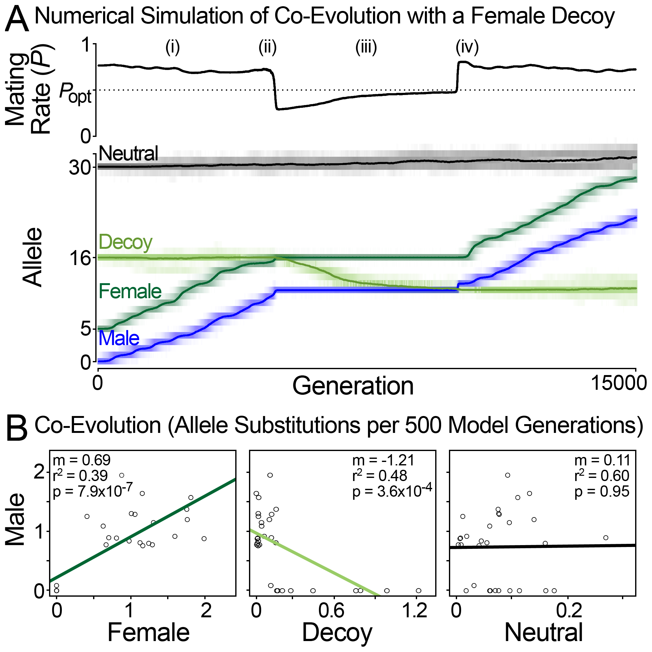 Population simulation of sexual conflict with a female decoy.