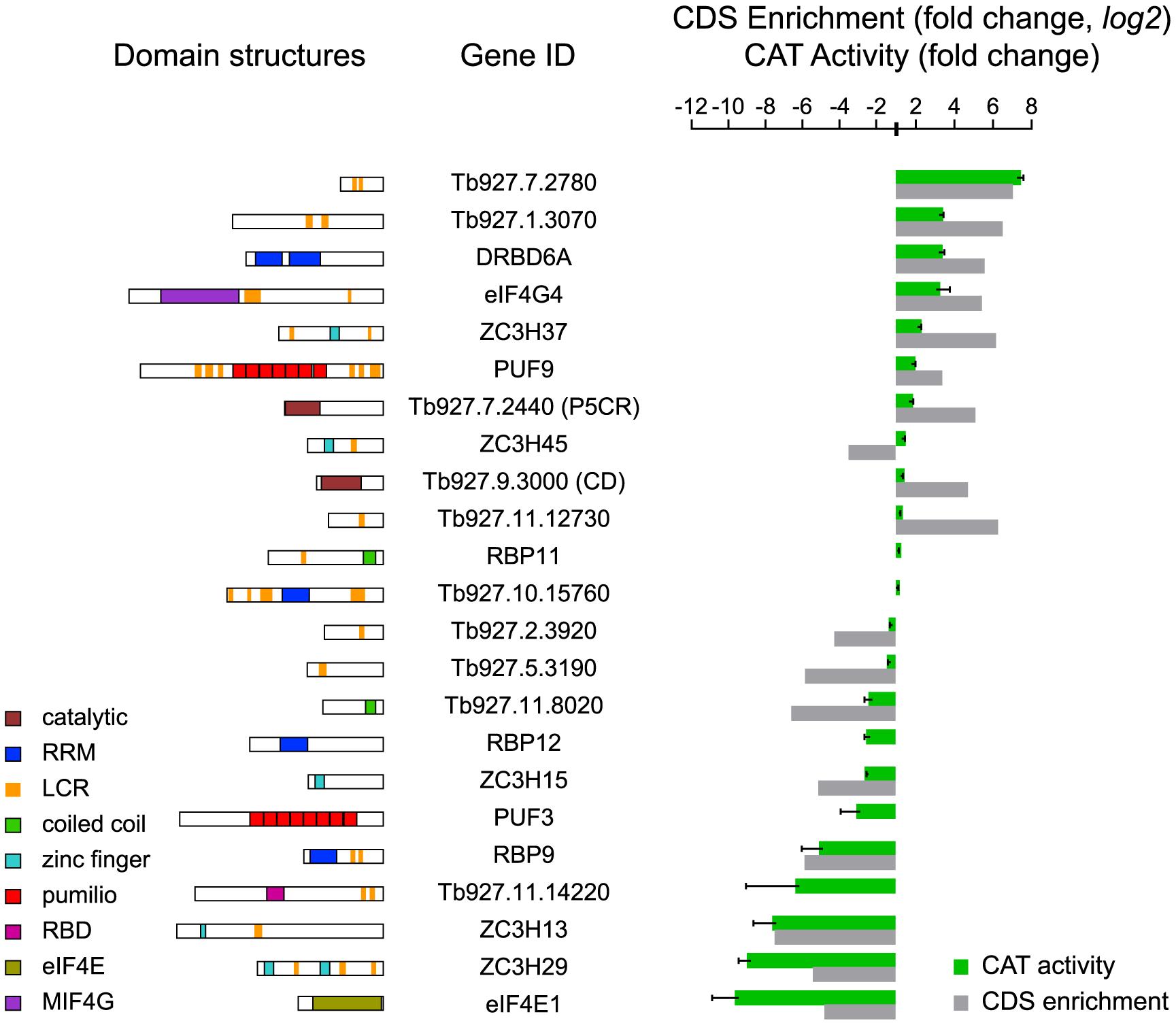 Validation of mRNA-fate regulators.