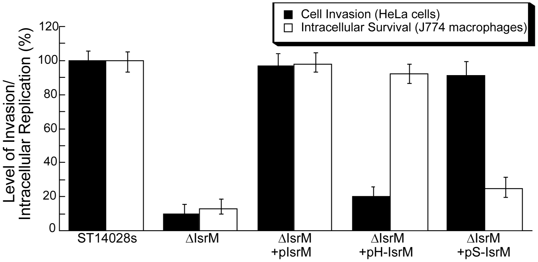 Epithelial cell invasion and intracellular replication in macrophages.