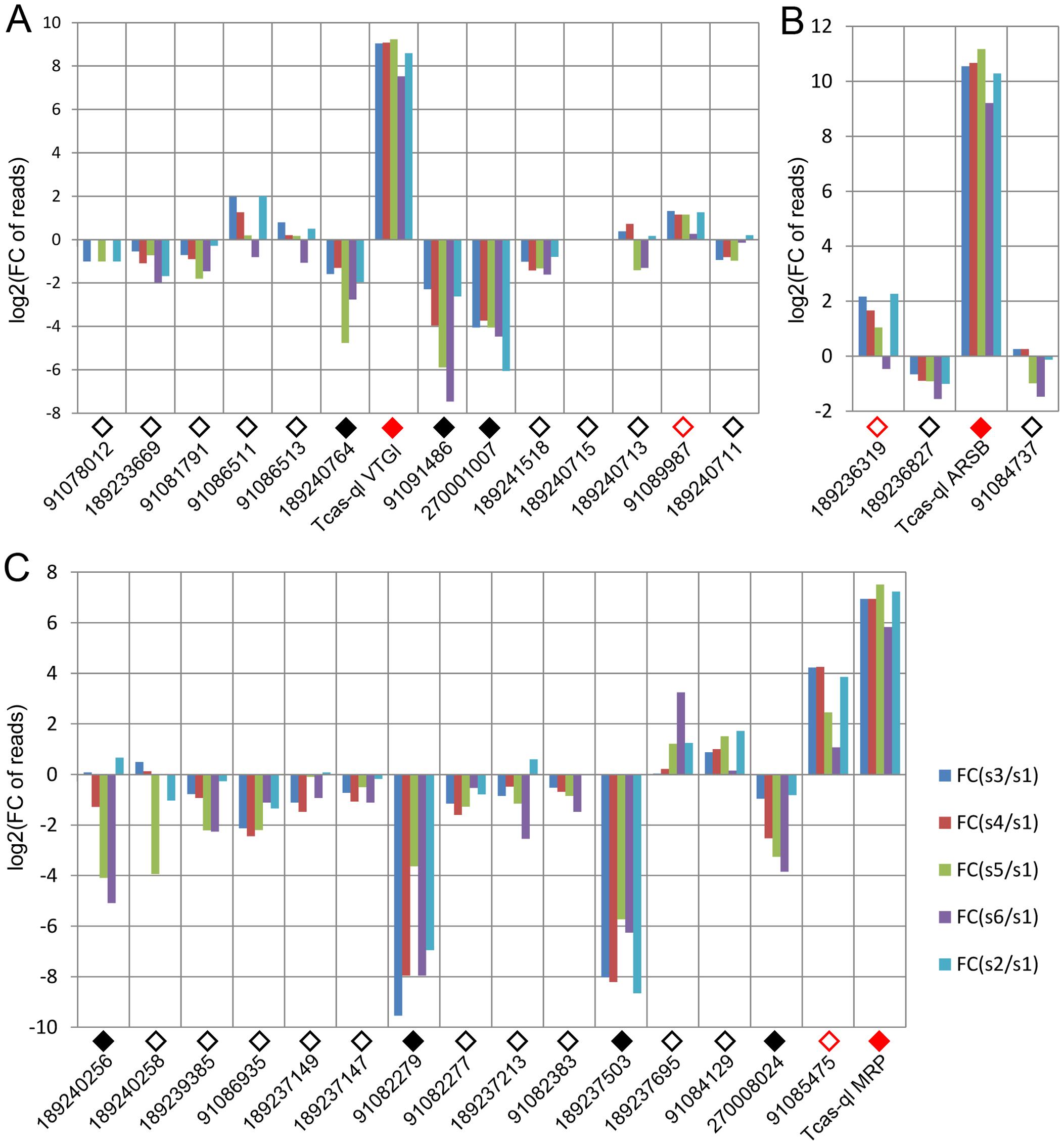Relative transcriptomic gland expression levels of the <i>Tribolium</i> homologs of the three novel <i>quinone-less</i> genes.