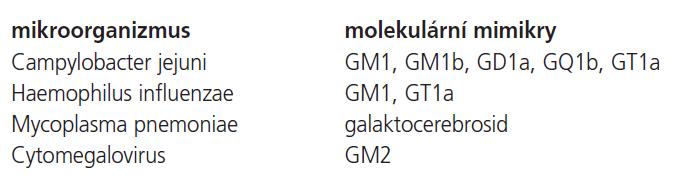 Lidské gangliosidy versus lipo-oligosacharidy mikrobiálního původu – molekulární mimikry.