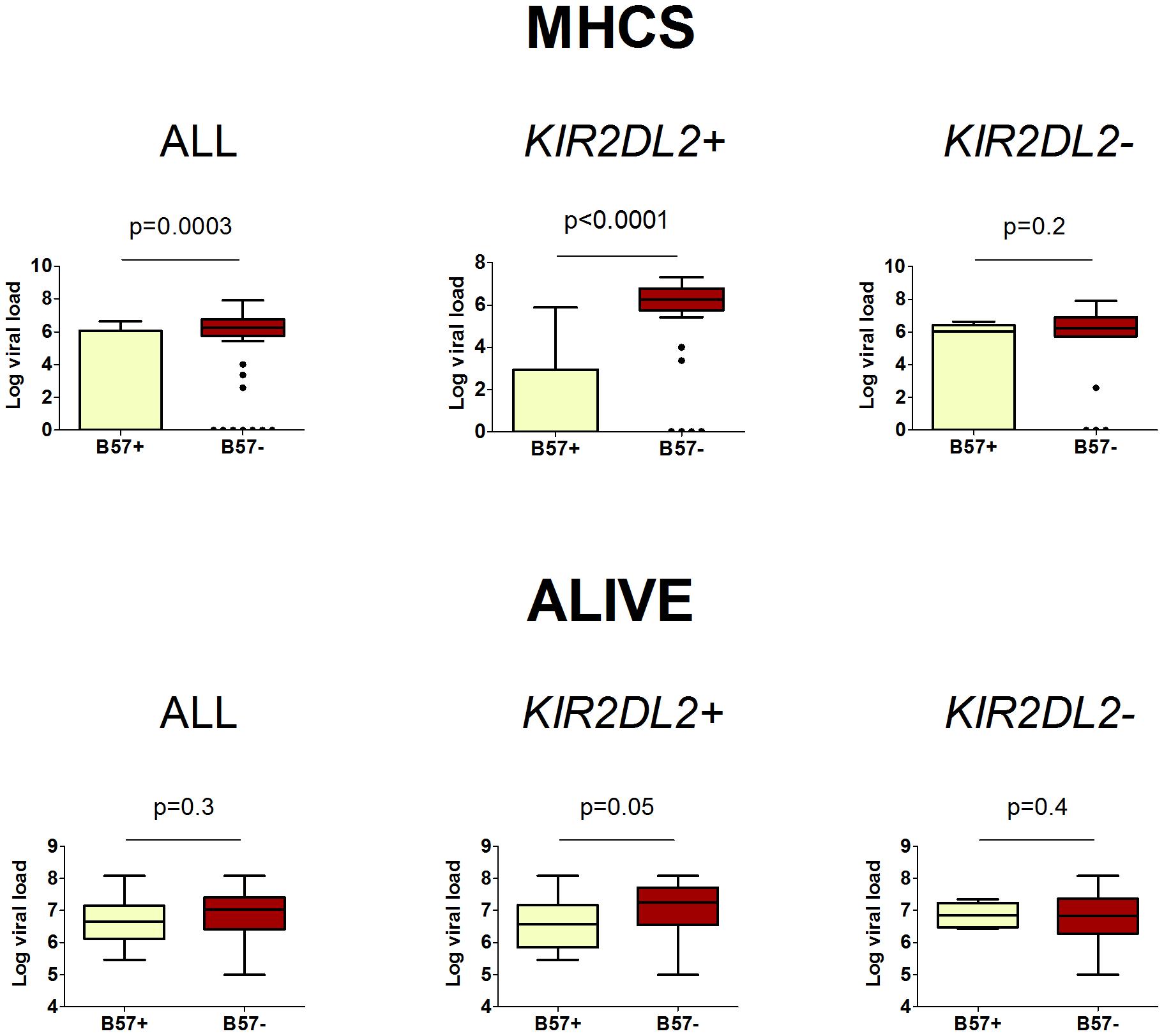 The impact of <i>HLA-B*57</i> and <i>KIR2DL2</i> on HCV viral load.